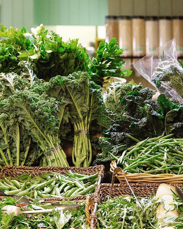 @rhubarbrhubarborganics forty shades of green ☘️🥦🥒