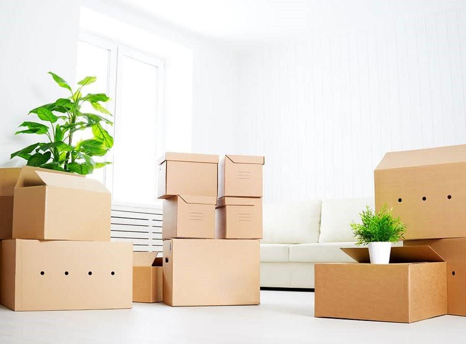 moving-office1.jpg