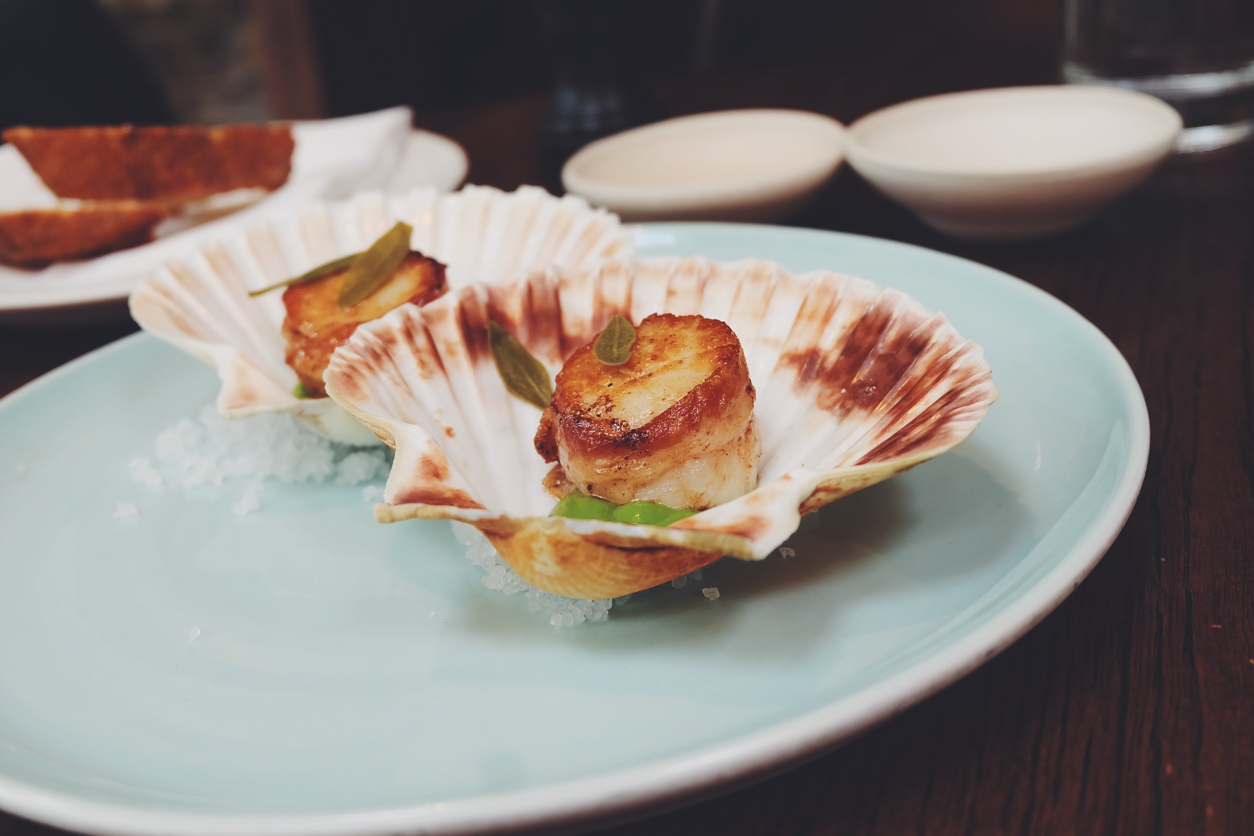 Roast orkney scallop wrapped in pancetta, courgette and garlic (£14)
