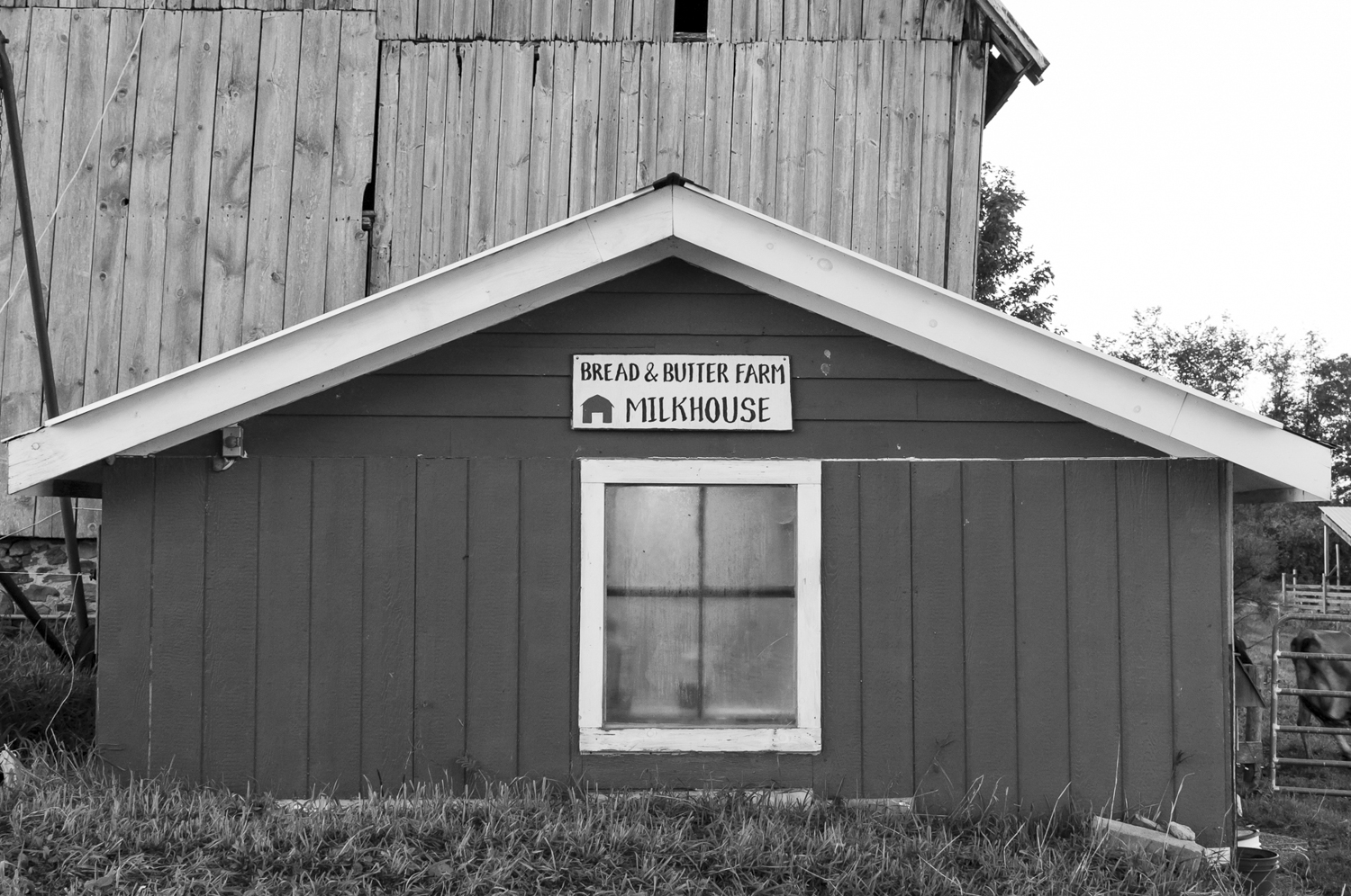 The Milkhouse at Henry's Dairy.