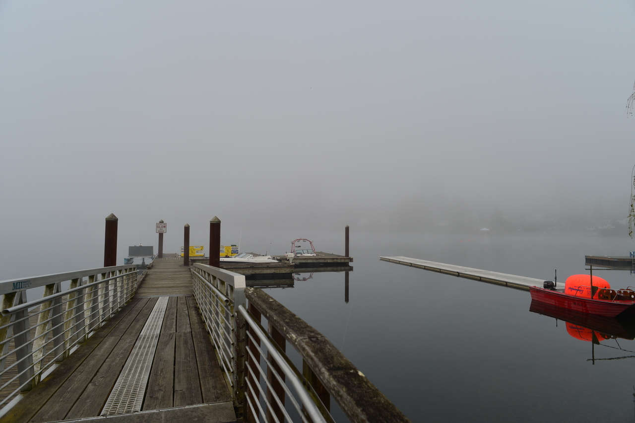 waiting for the fog to life.jpg