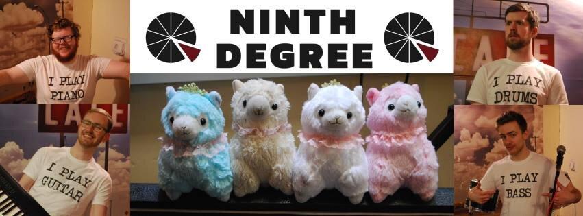 Ninth Degree Banner.jpg