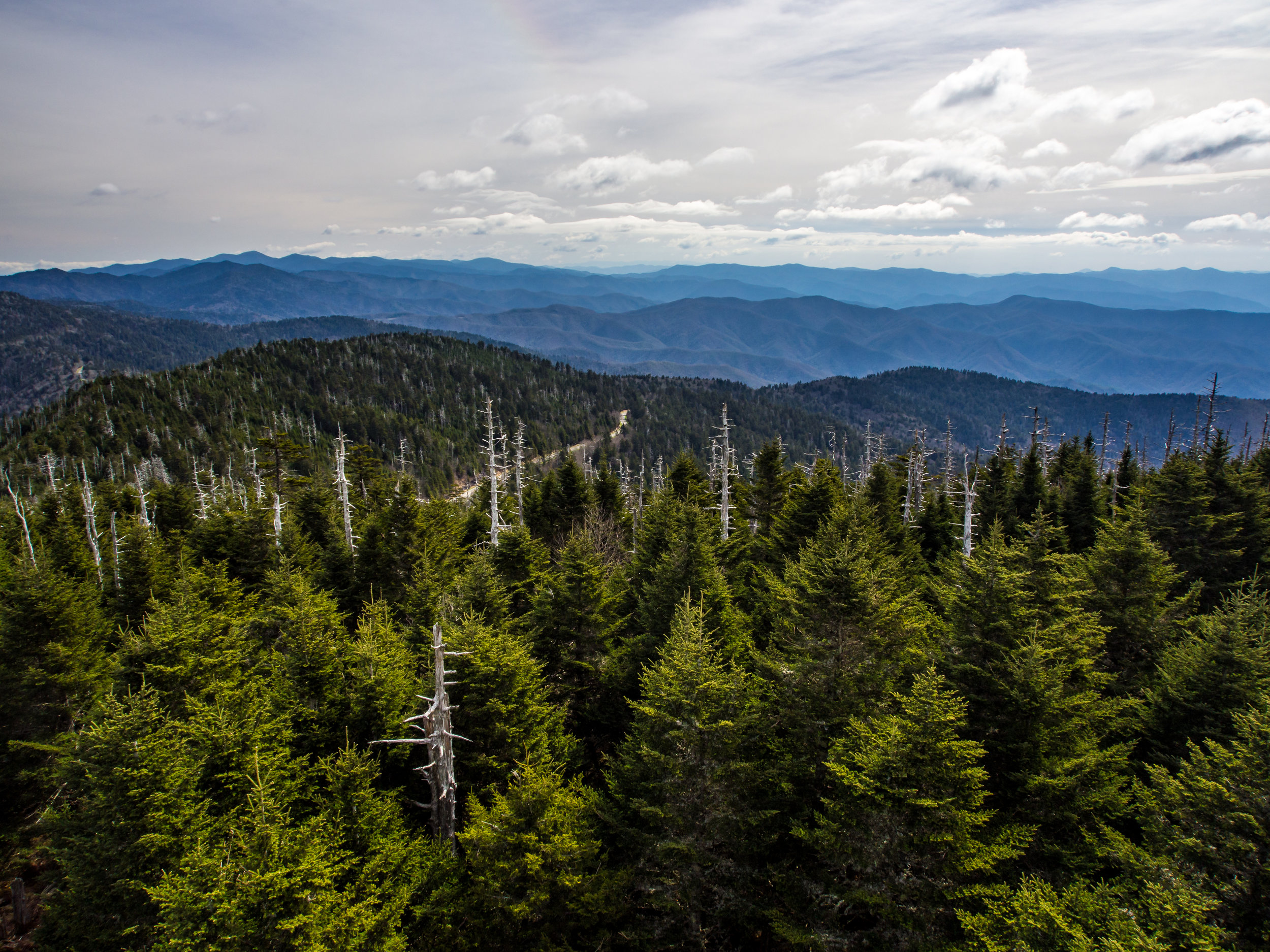 The view from the observation tower on Clingmans Dome.