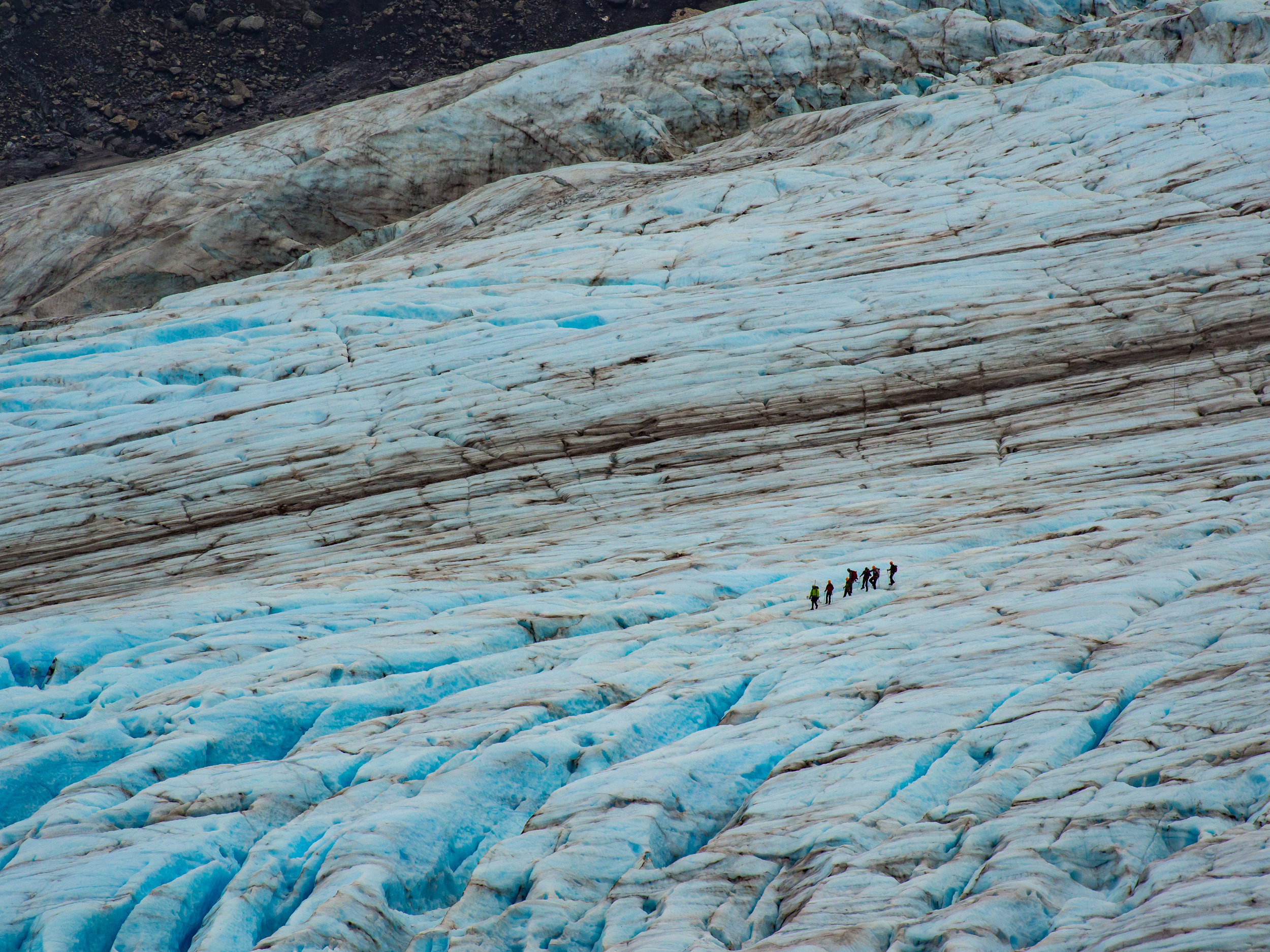 A guided tour on Exit Glacier
