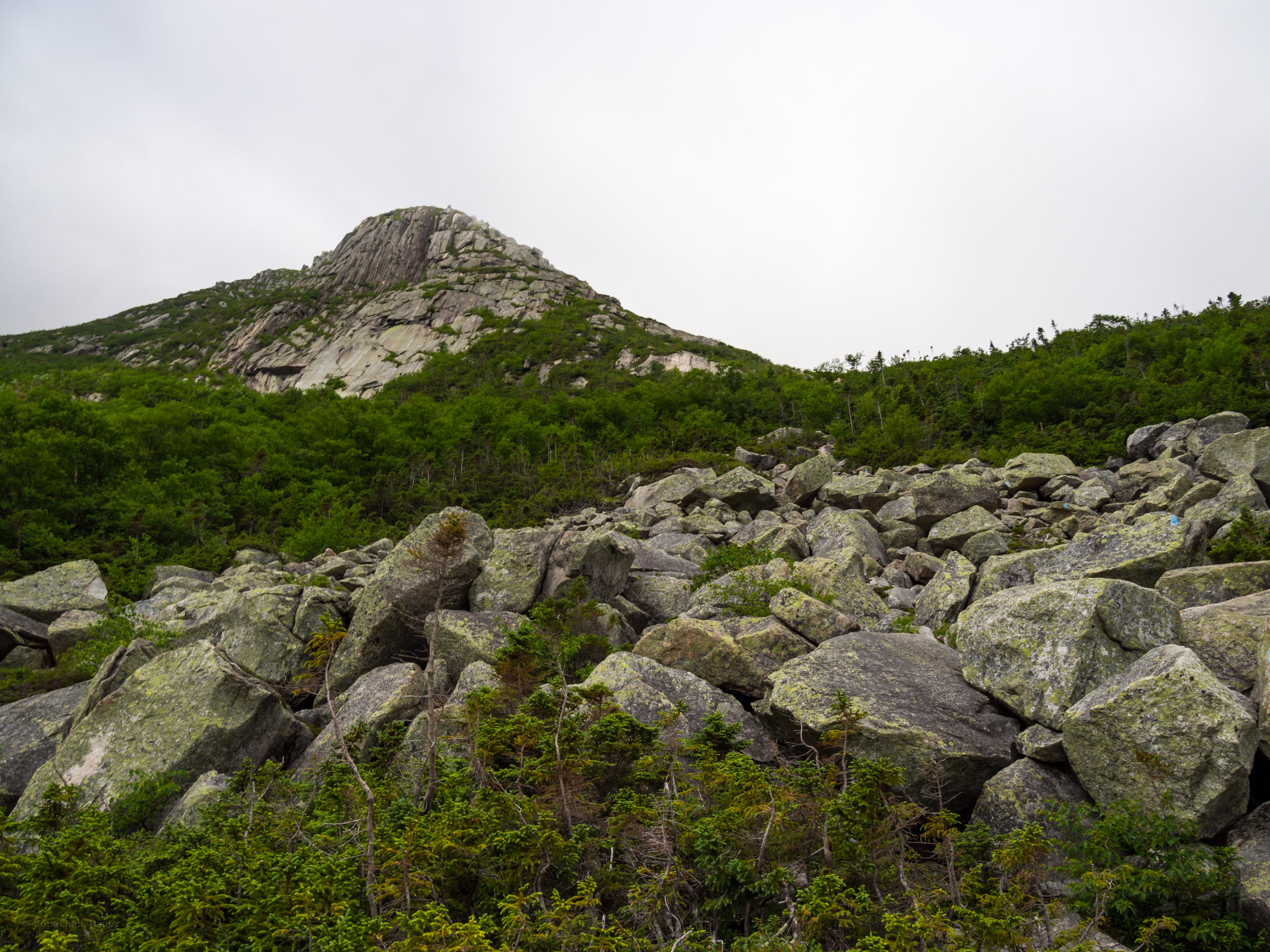 The start of the climb along the Cathedral trail.