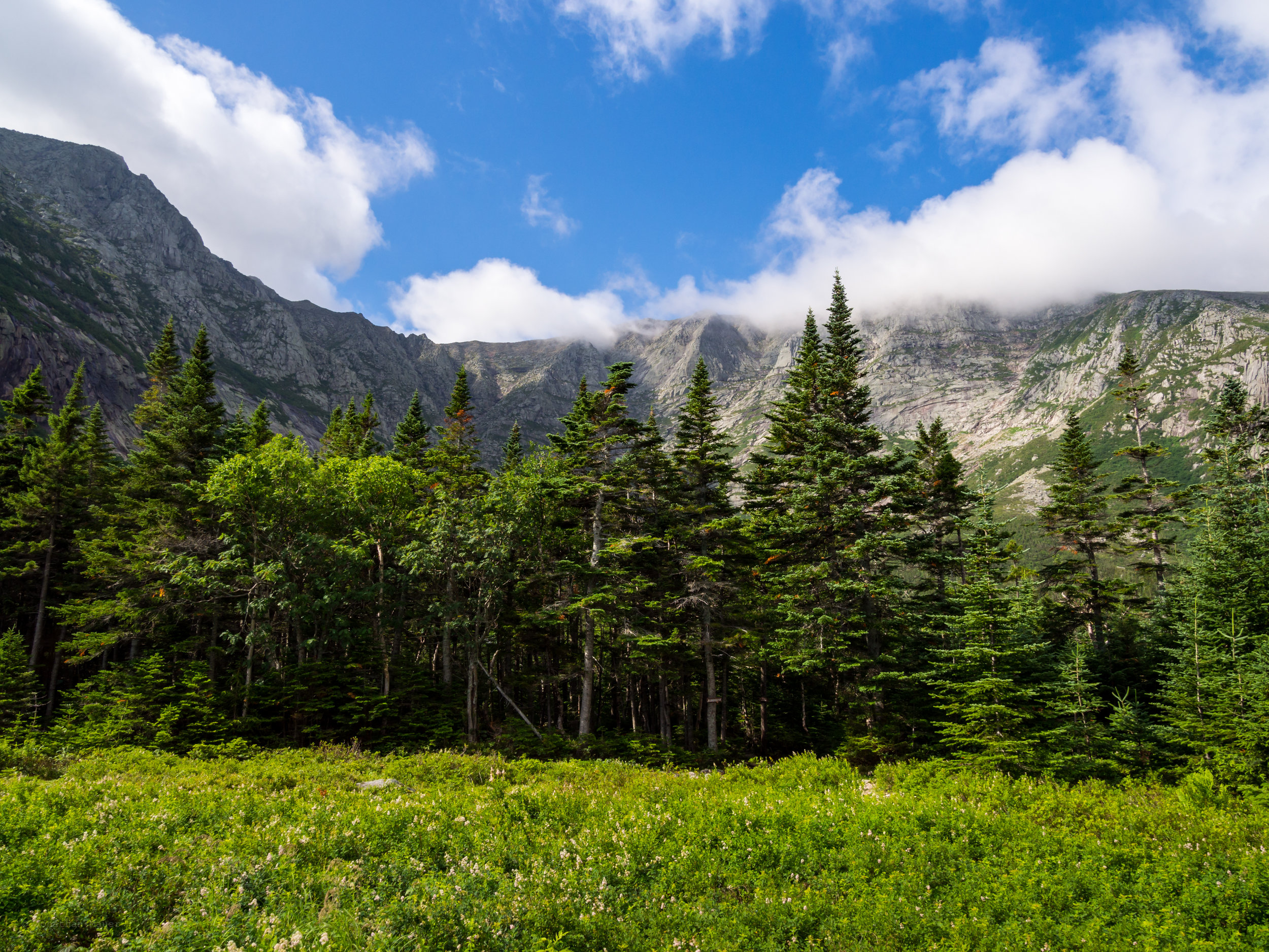 View of the Knife's Edge from Chimney Pond campground.