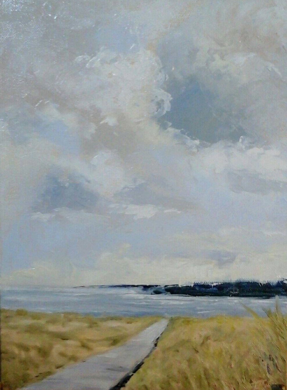 """Boardwalk At Plum Island, Study 9"""" x 12"""" oil on canvas in 3.5""""W black frame"""