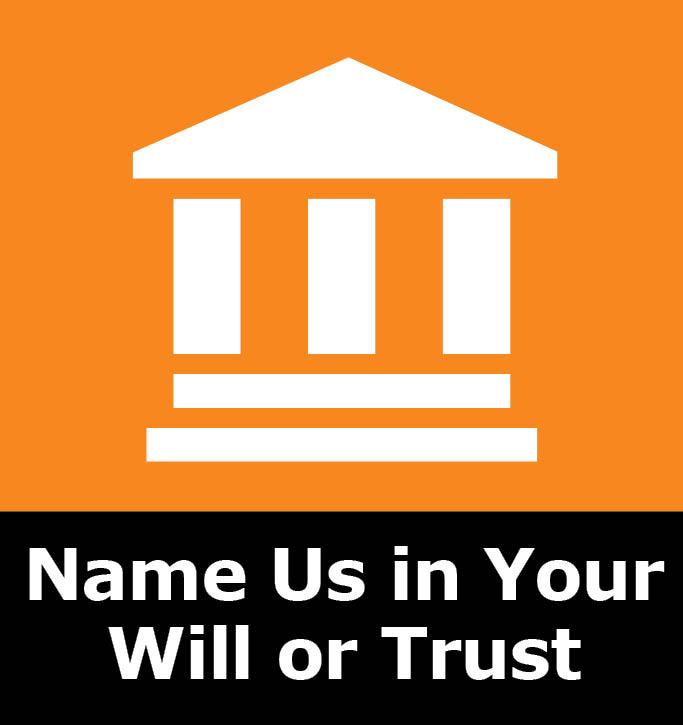 Name Us Wil.jpg