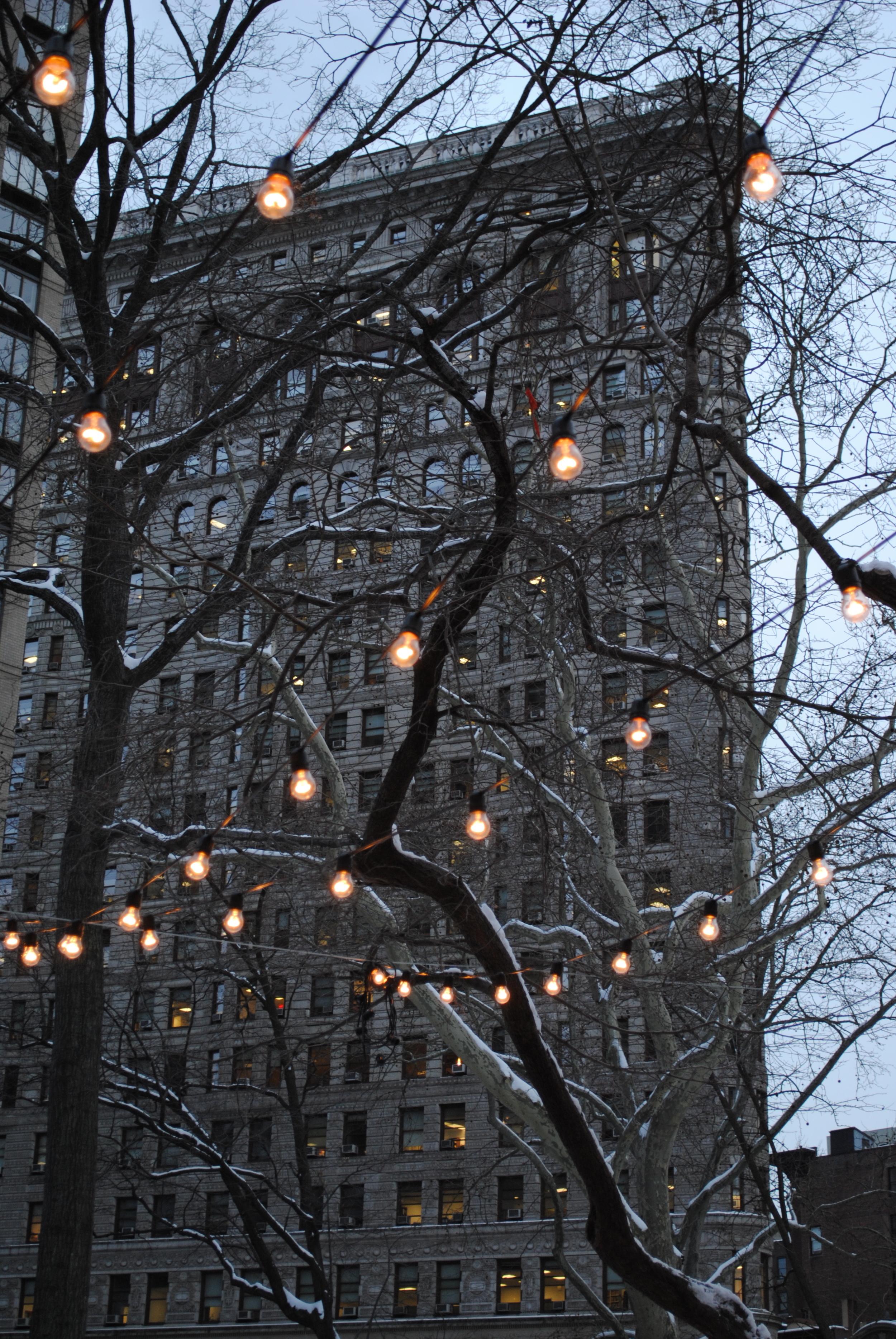 Fairylight-Twilight Flatiron , Madison Square Park NYC, December 2010