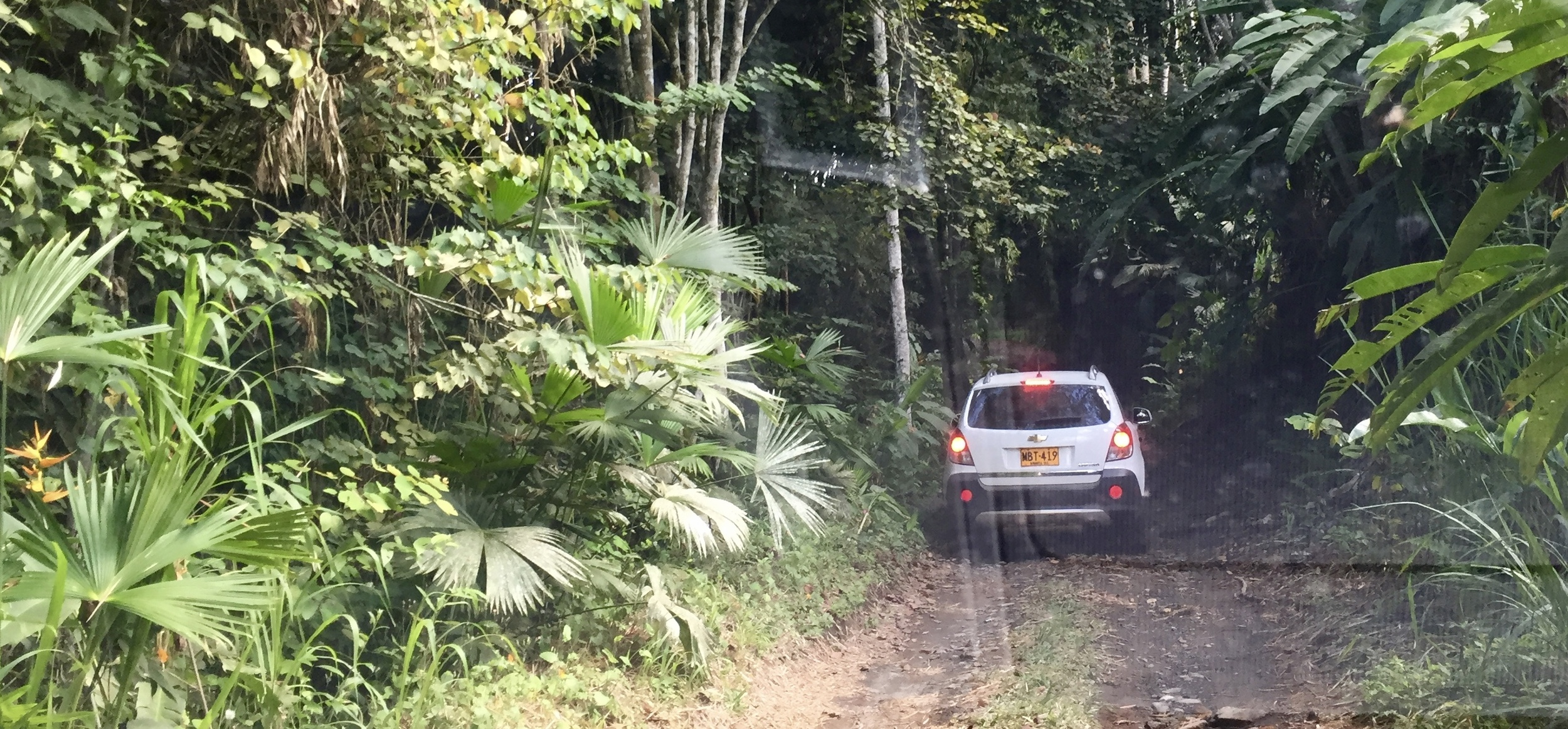 Ten minutes after leaving the airport, we make our way on a country road to a family members Finca.
