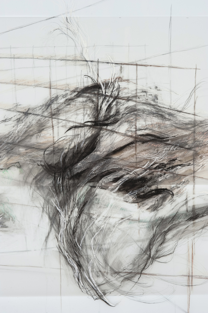 A Wave for Hokusai (detail), 2010, Graphite, pastel, oil bar on paper and mylar, 118 x 230 inches
