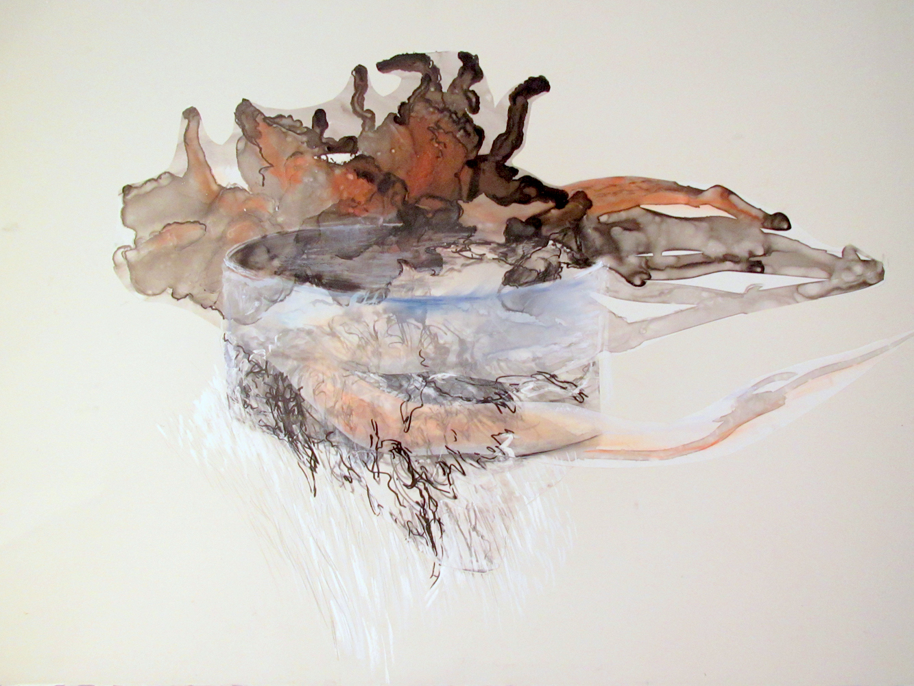 Wishing Water Well , 2013, Graphite, pastel on paper and mylar, 24 x 36 inches
