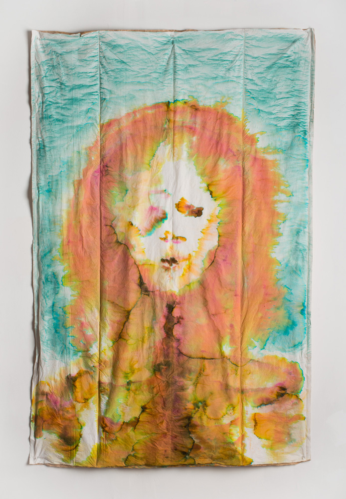 """Seen Better Days , 2013, Food coloring on """"Pac Pads"""", 6 x 4 feet"""