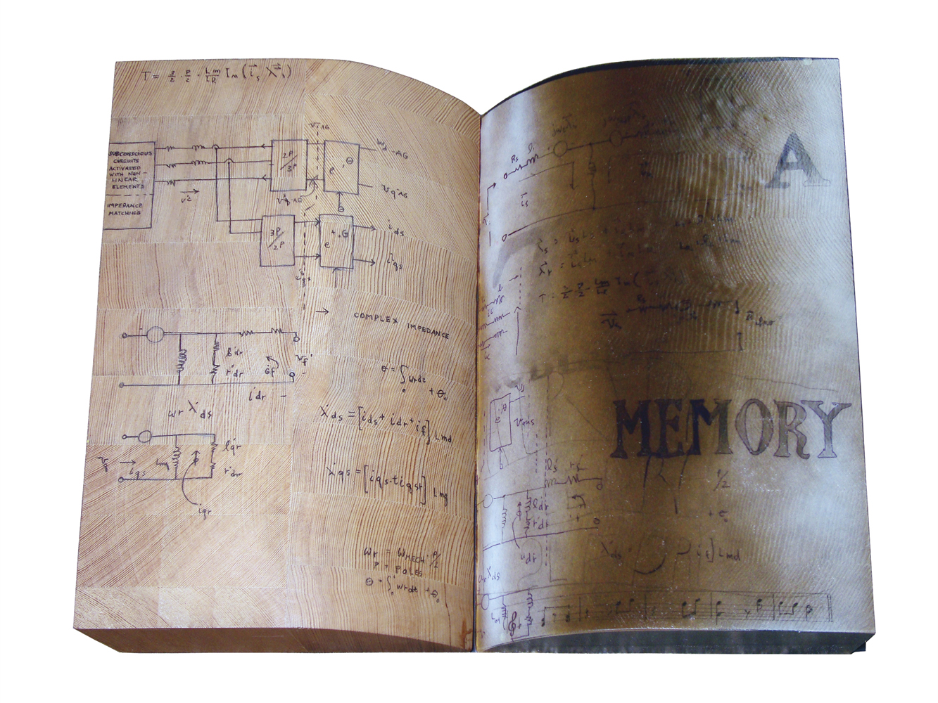 "Memory Book    ,  2010  , cast silicone w/inclusions and markings  , 14""H x 17""W x 3""D"