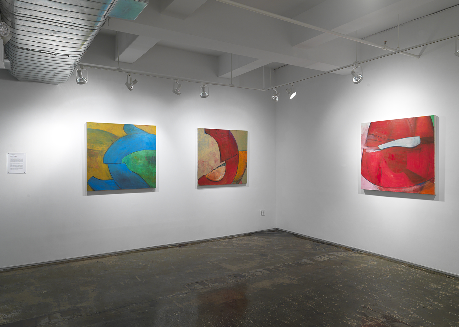 Recent Paintings  Ivy Dachman