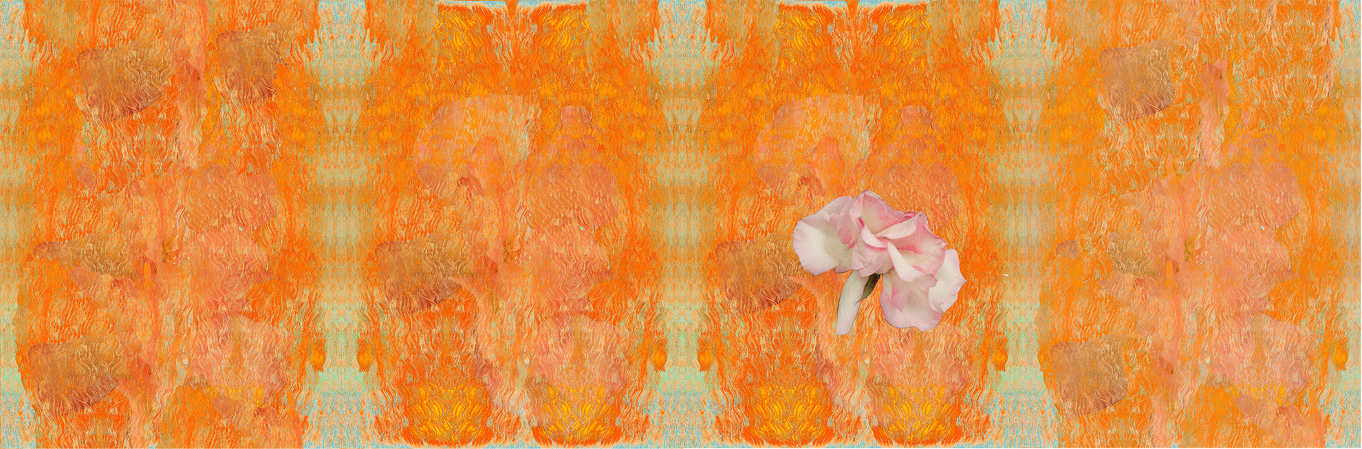 They Will Become Pink Mist , 2016, Pigment print, 17 x 63 inches