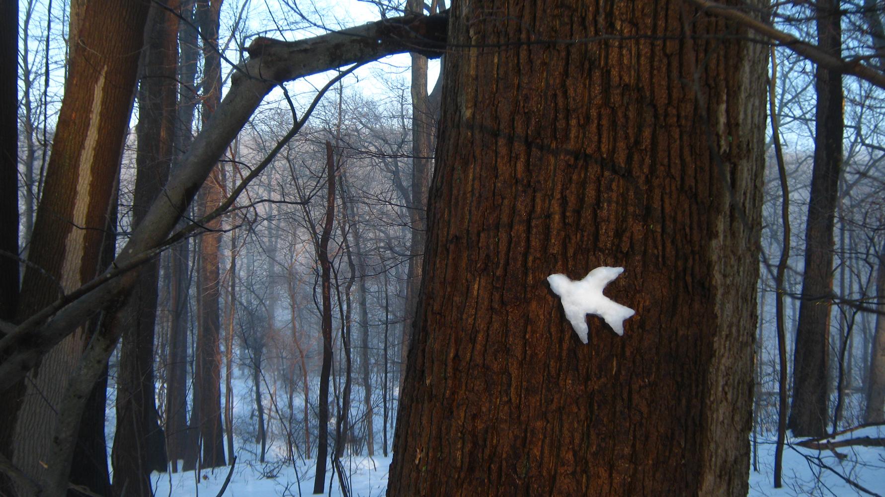 "Barbara Roux, Snow Bird, 2014, Digital print of Roux's site sculpture, 13 x 19"""