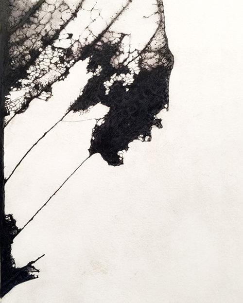 Untitled #12 , 2015, Graphite on prepared paper