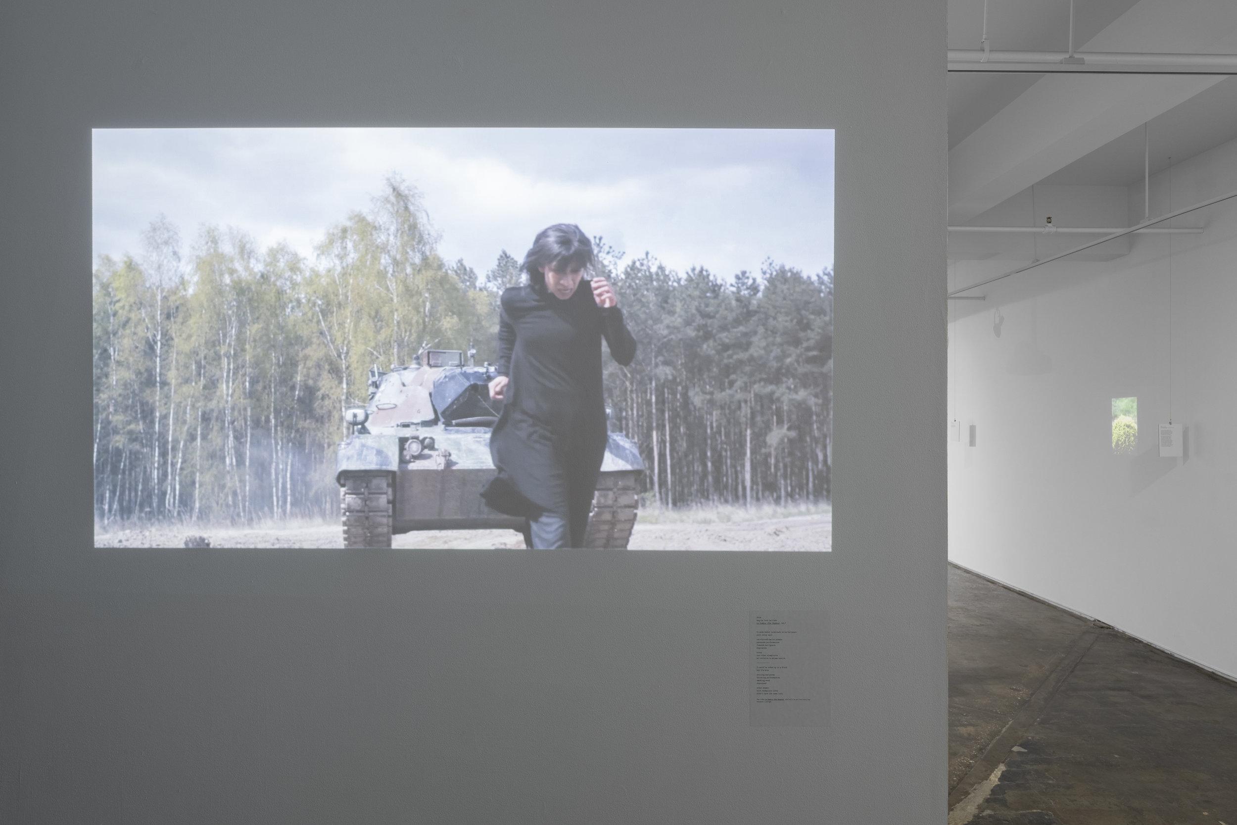 "Regina José Galindo, ""La Sombra,"" 2017 See Translation"