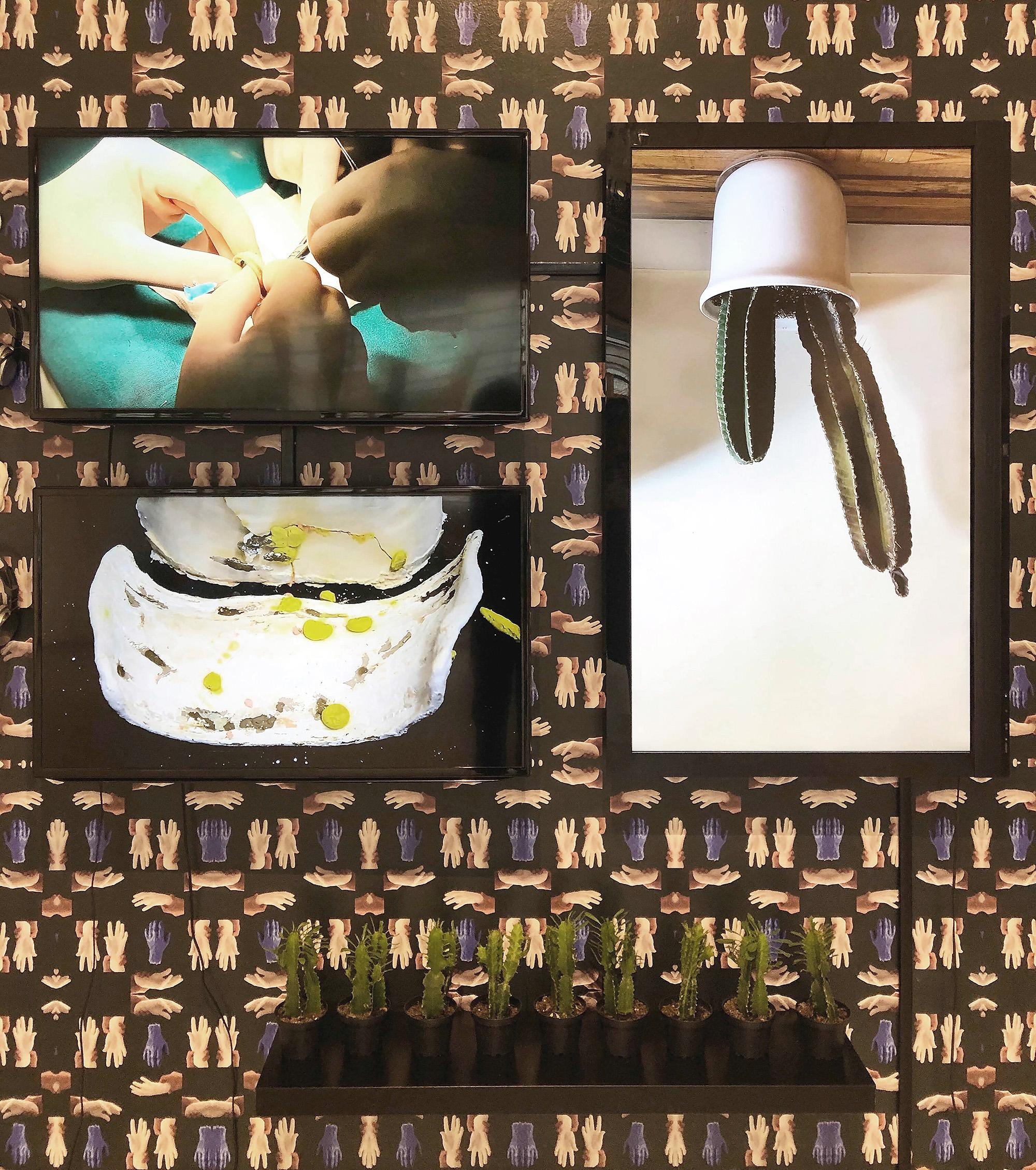 "Sareh Imani, Kindred Stitches (Installation view),  2018, Three channel video installation, stereo sound,loop, cacti, plaster, custom designed wallpaper, 144"" x 96"" x 12""."