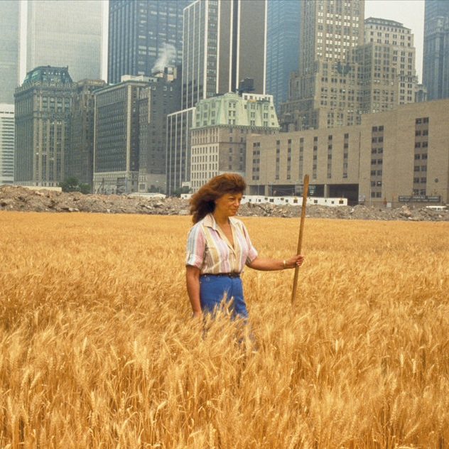 agnes denes wheatfield.jpg
