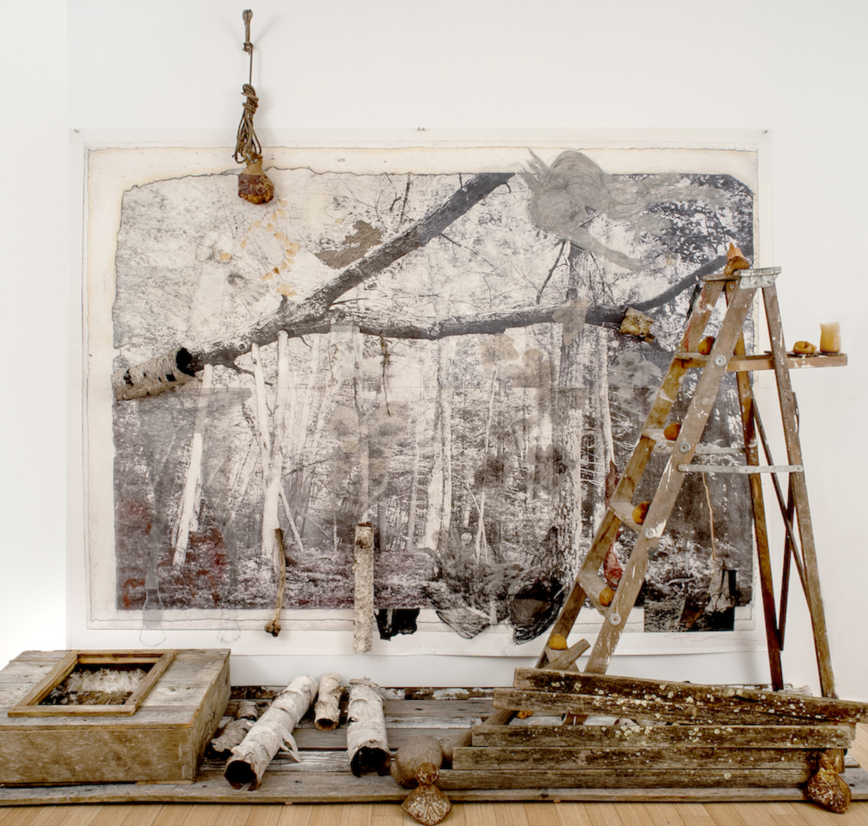 She Fell, He Disintegrated While Black Flowers Rained Down as Dusk Descended , 2018, 14' x 12' x 4', installation with giclee enlargement of photogravure from a photograph of an outdoor Memorial to my deceased husband, collaged with dried roses, snakeskin, gravure prints, Tarleton, drawing, chalk, silverpoint, bone, wood, birch bark, shag bark, aged floor planks, vintage wood ladder, latex cups, dried tangerines, cast iron, rope, urethane foam, railroad spike, Book of the Dead; Wonderland, feathers, seed pods.