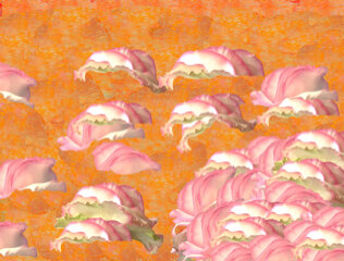 cloud blossom press.jpg