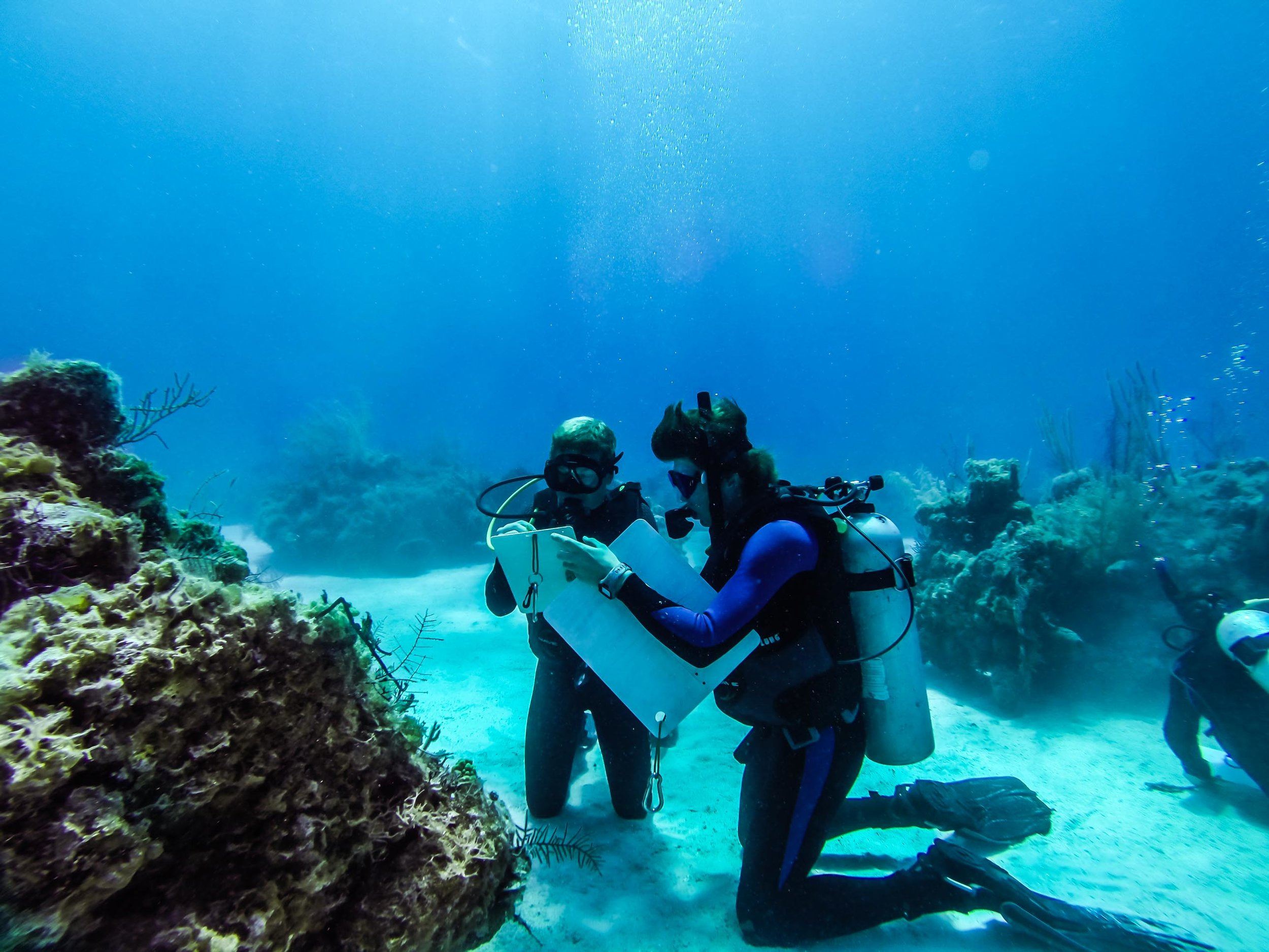 Hayden Stein and Nevin Ketchum recording notes during their dive at Tunnel Rock.