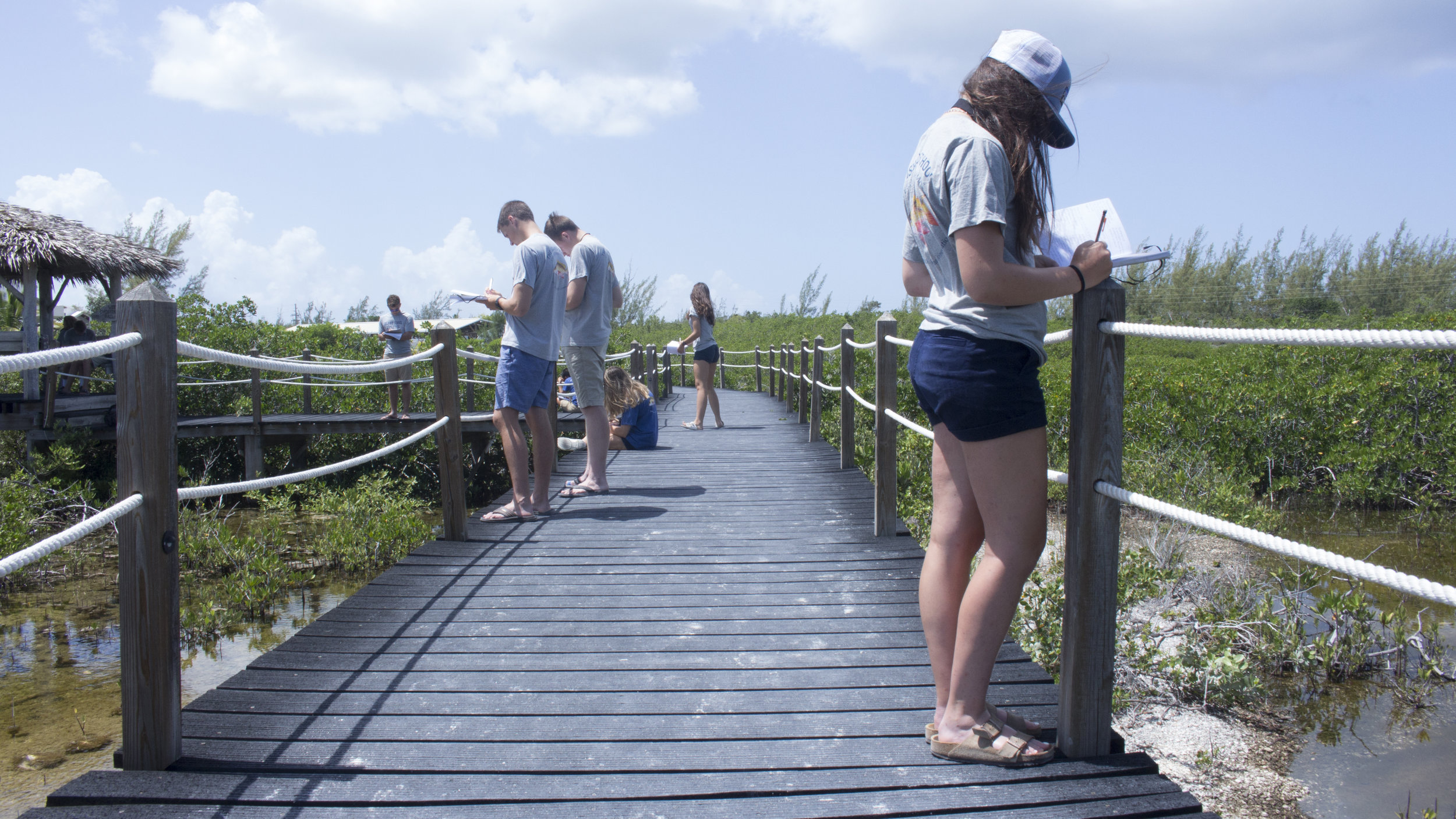 While learning about mangroves, students take a short walk over to the campus' mangrove forest, where they study the benefits of mangrove ecosystems and make observations.