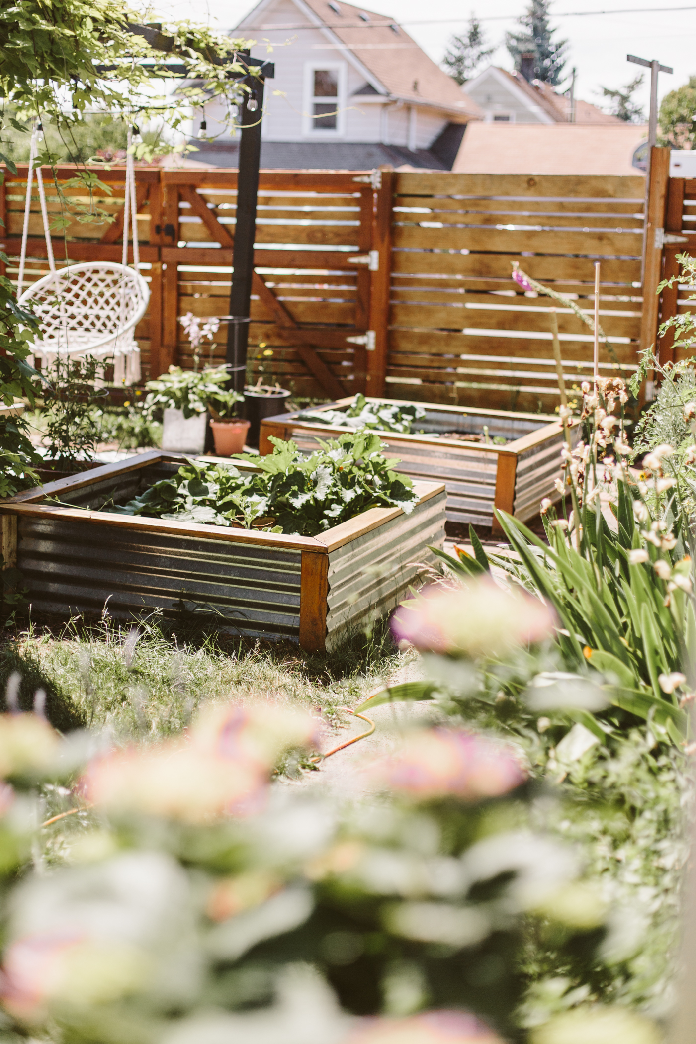 DIY corrugated metal raised beds