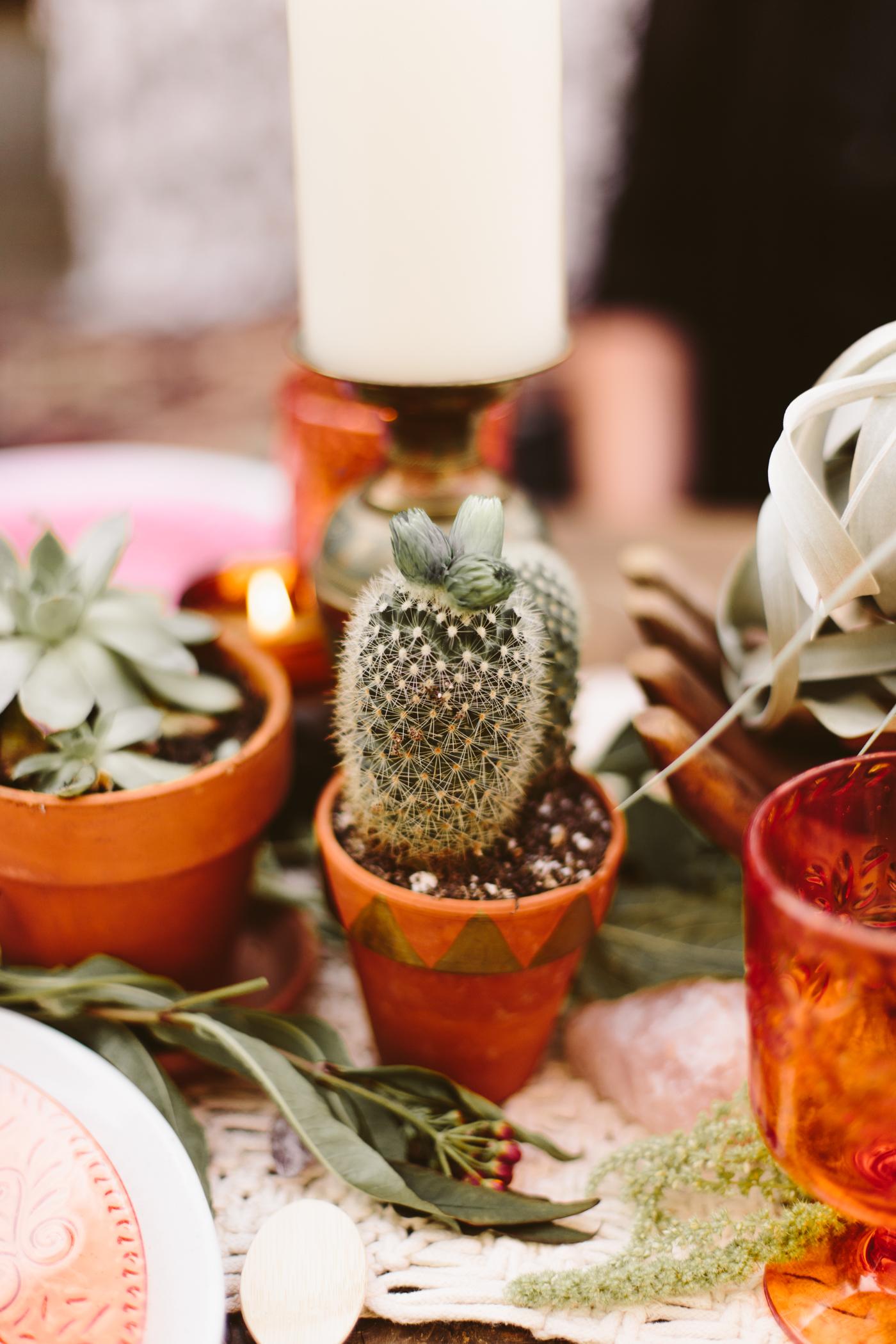 Moroccan Cactus Party-10.jpg