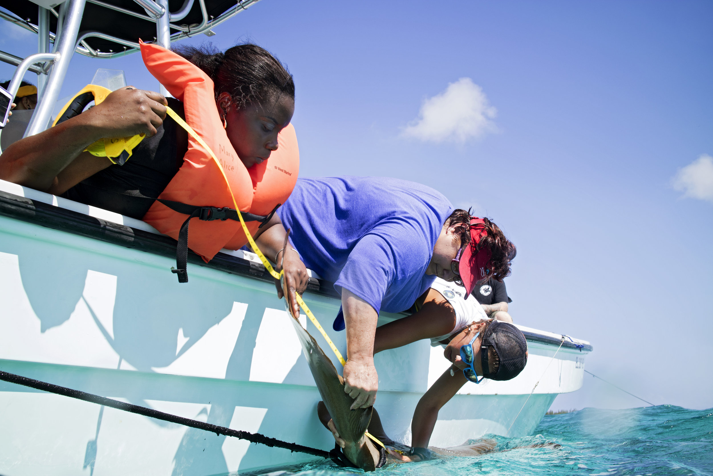 Administrative Assistants,   Sherrall Carey and Janelle Culmer, measure the fork length of a nurse shark.