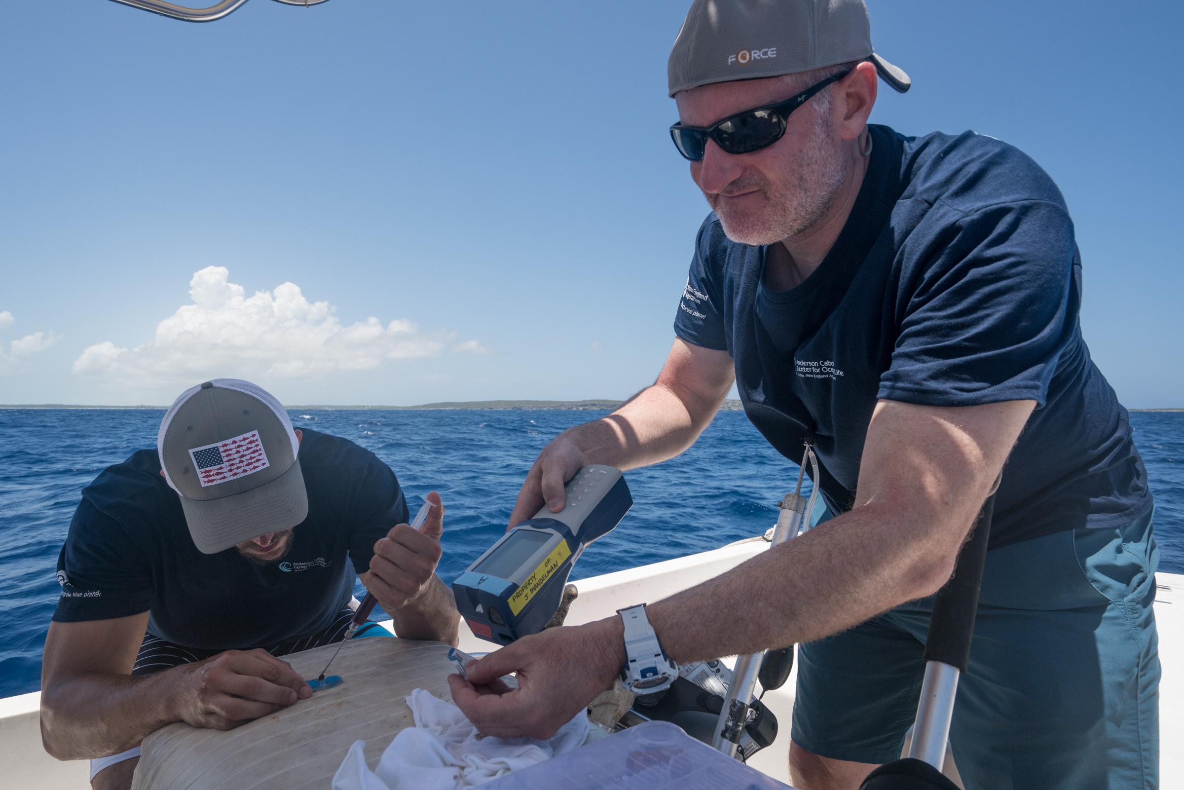 John Mandelman and Ryan Knotek process blood samples on the boat.