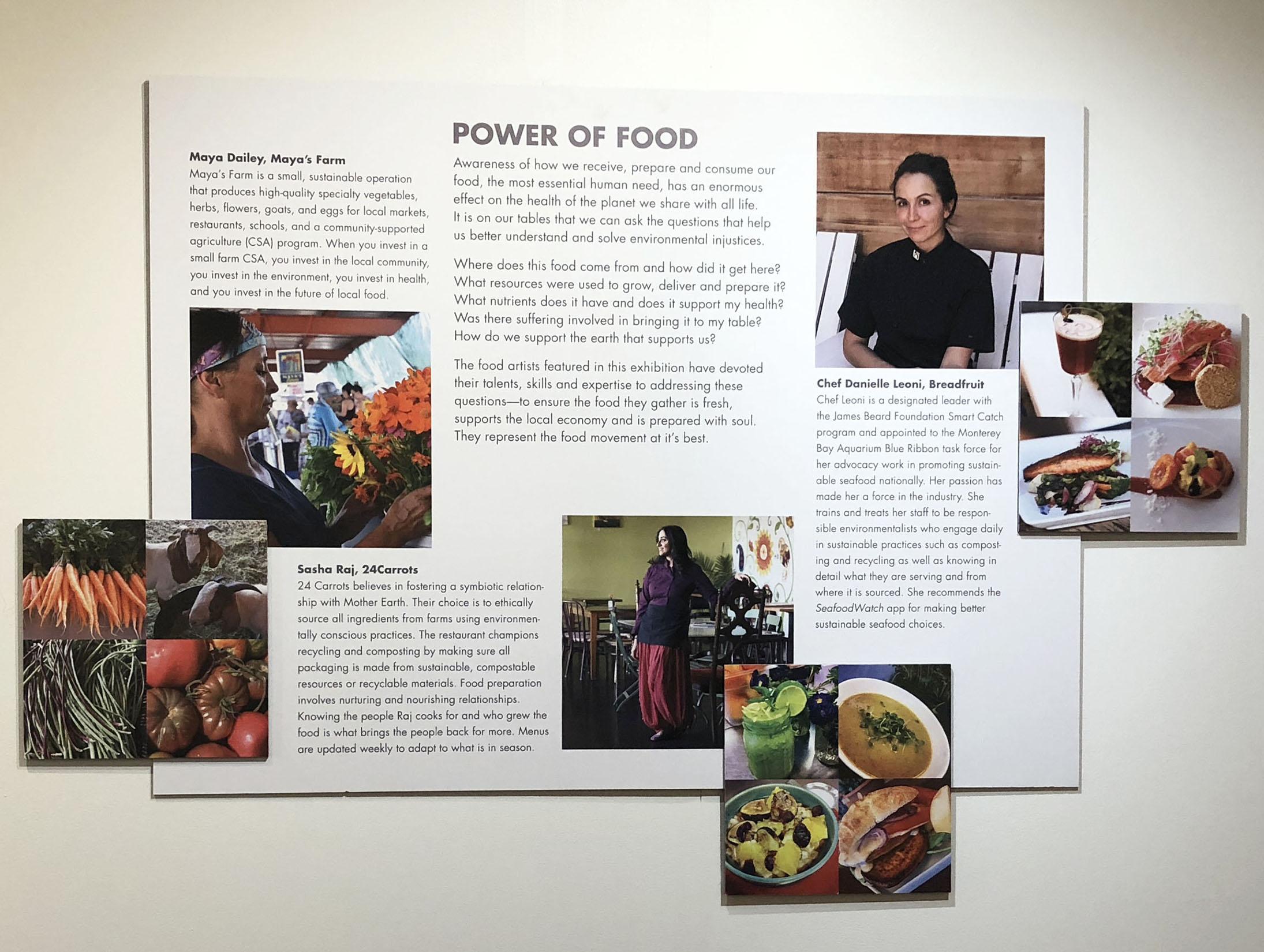 food panel.jpg