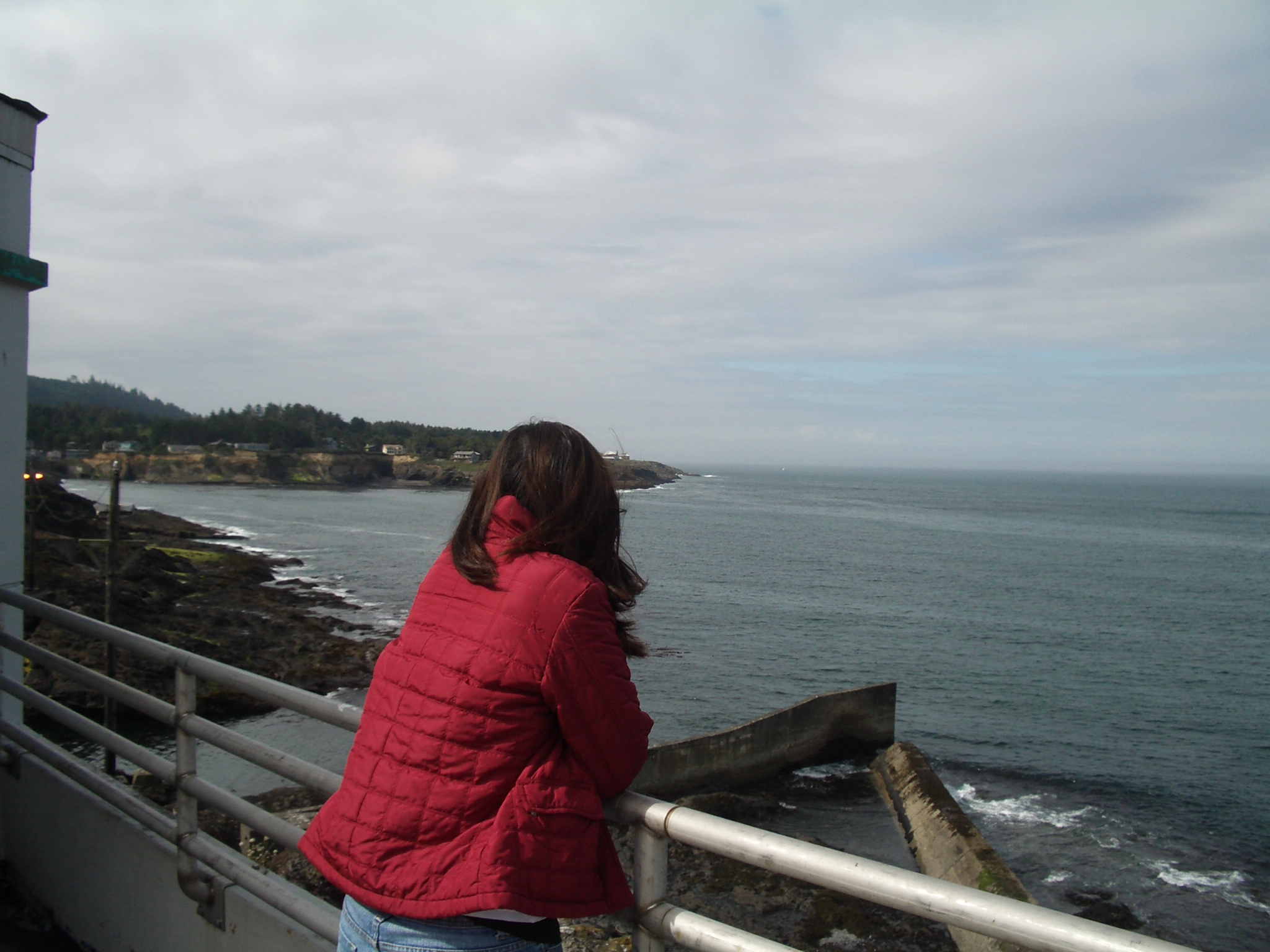 Looking for whales that arent there