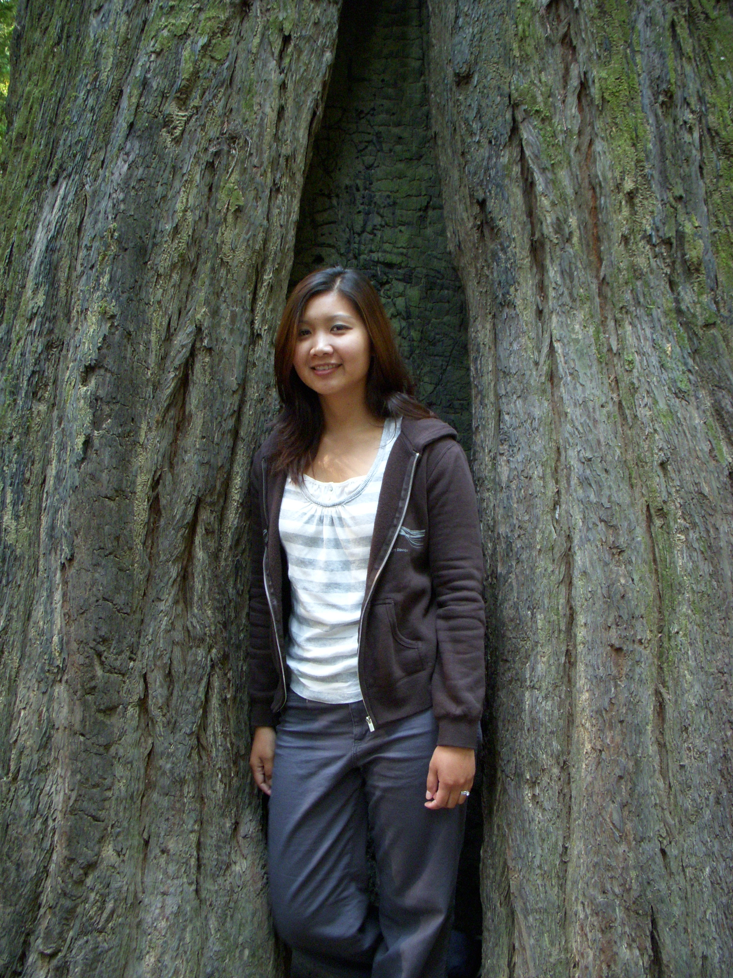 Mai in tree