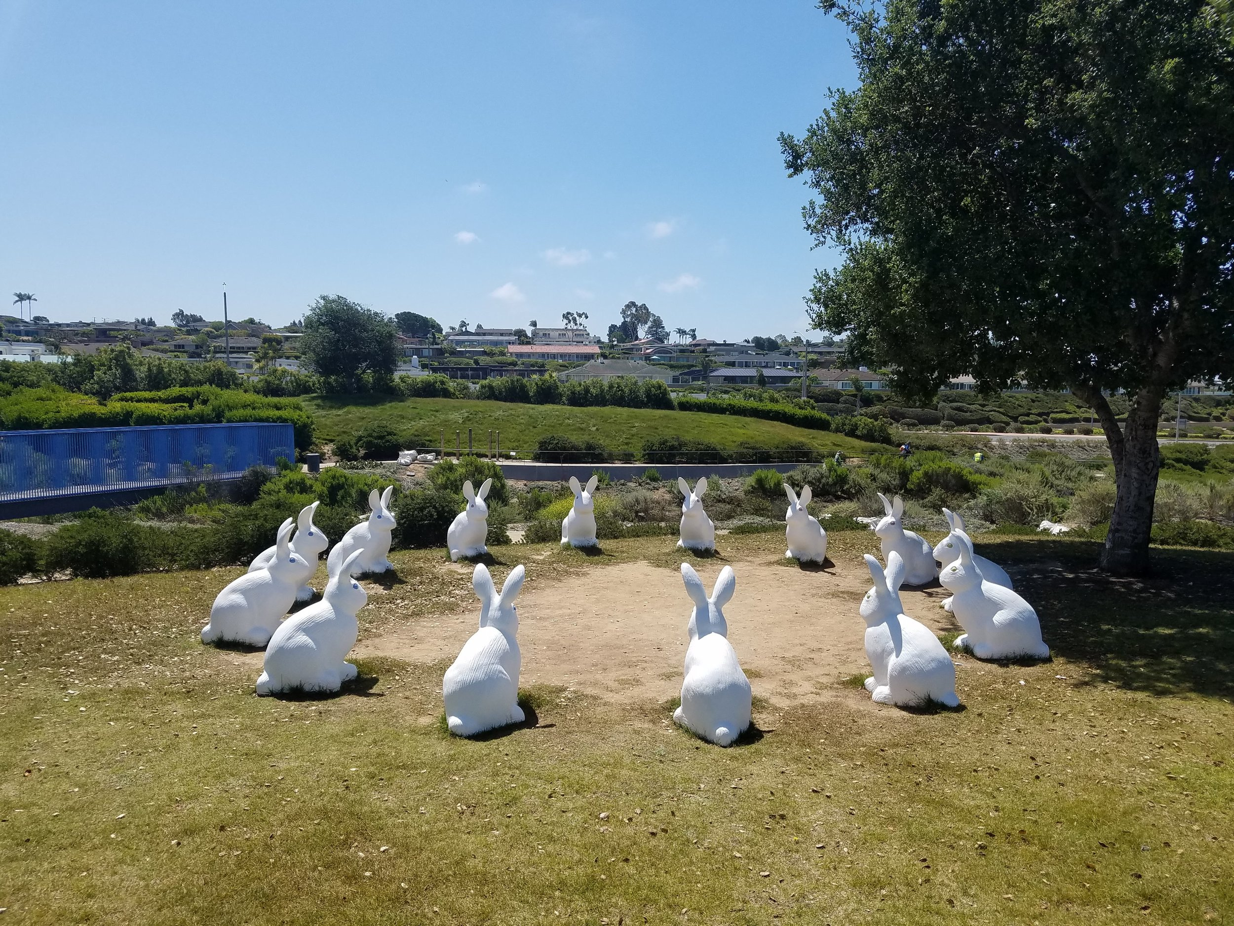 Magic circle of rabbits