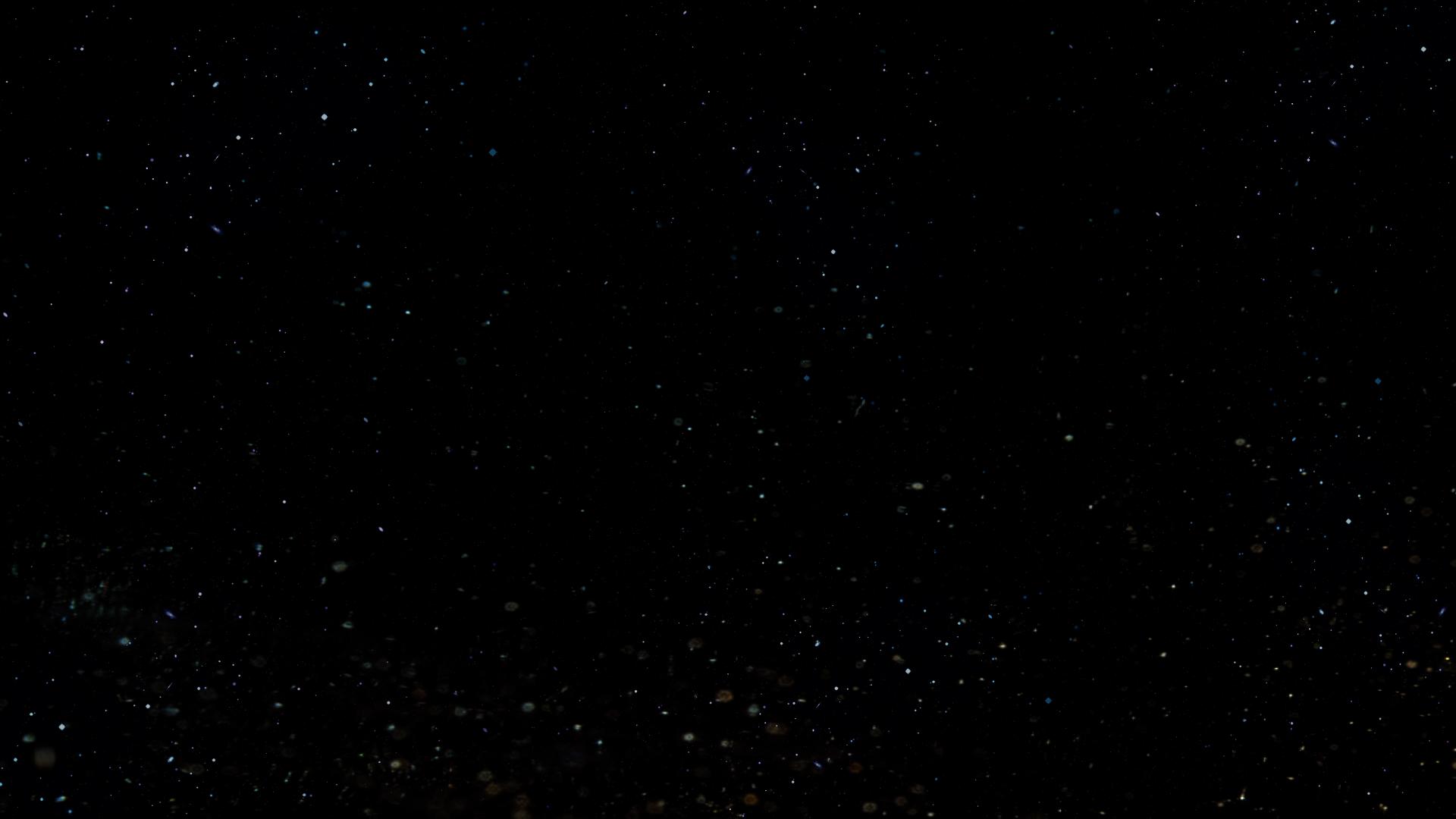 ADI Stars 01.jpg