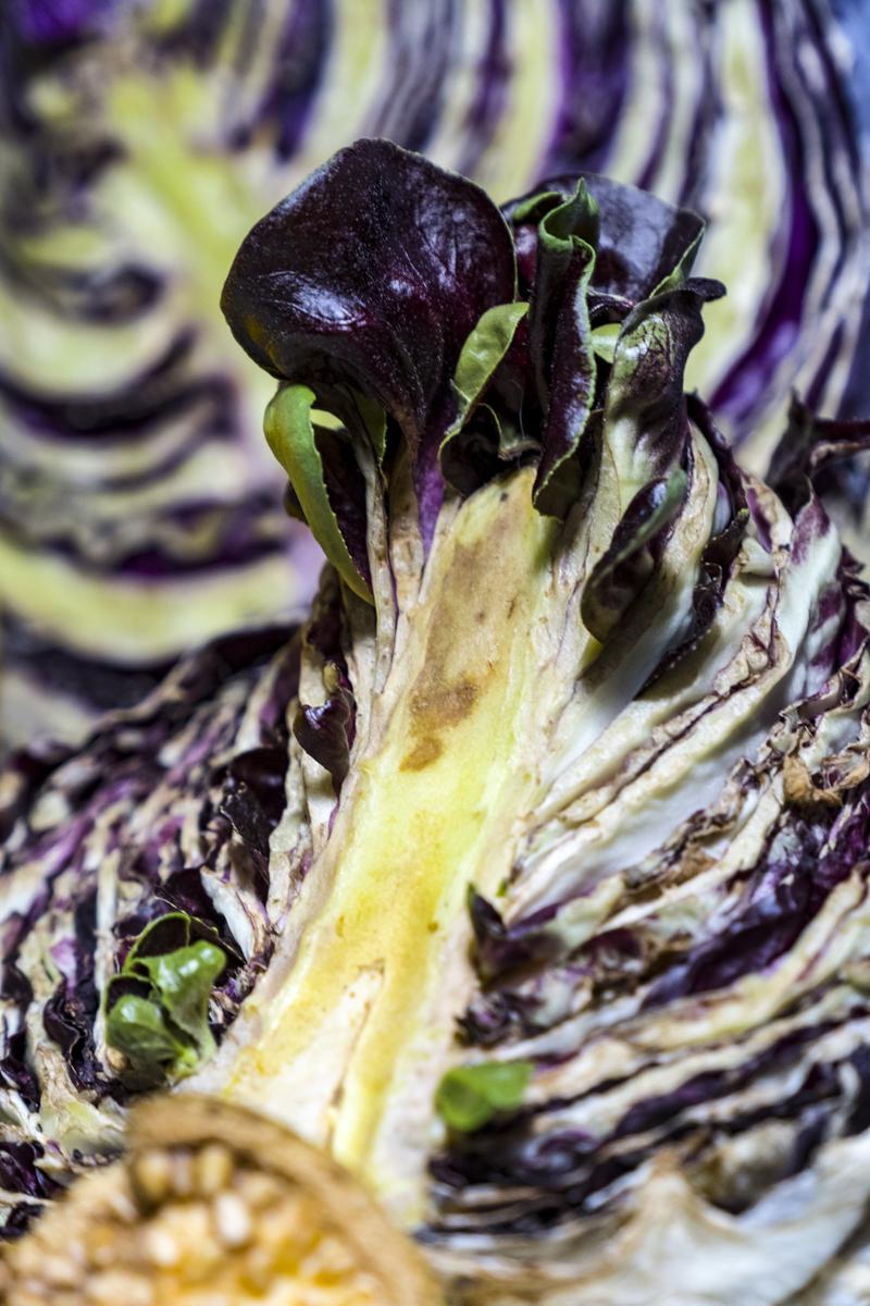 fine-art-photography-suffolk-virginia-vegetables
