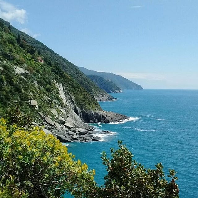 Cinque Terre, Italy. So nice to see the ocean again!