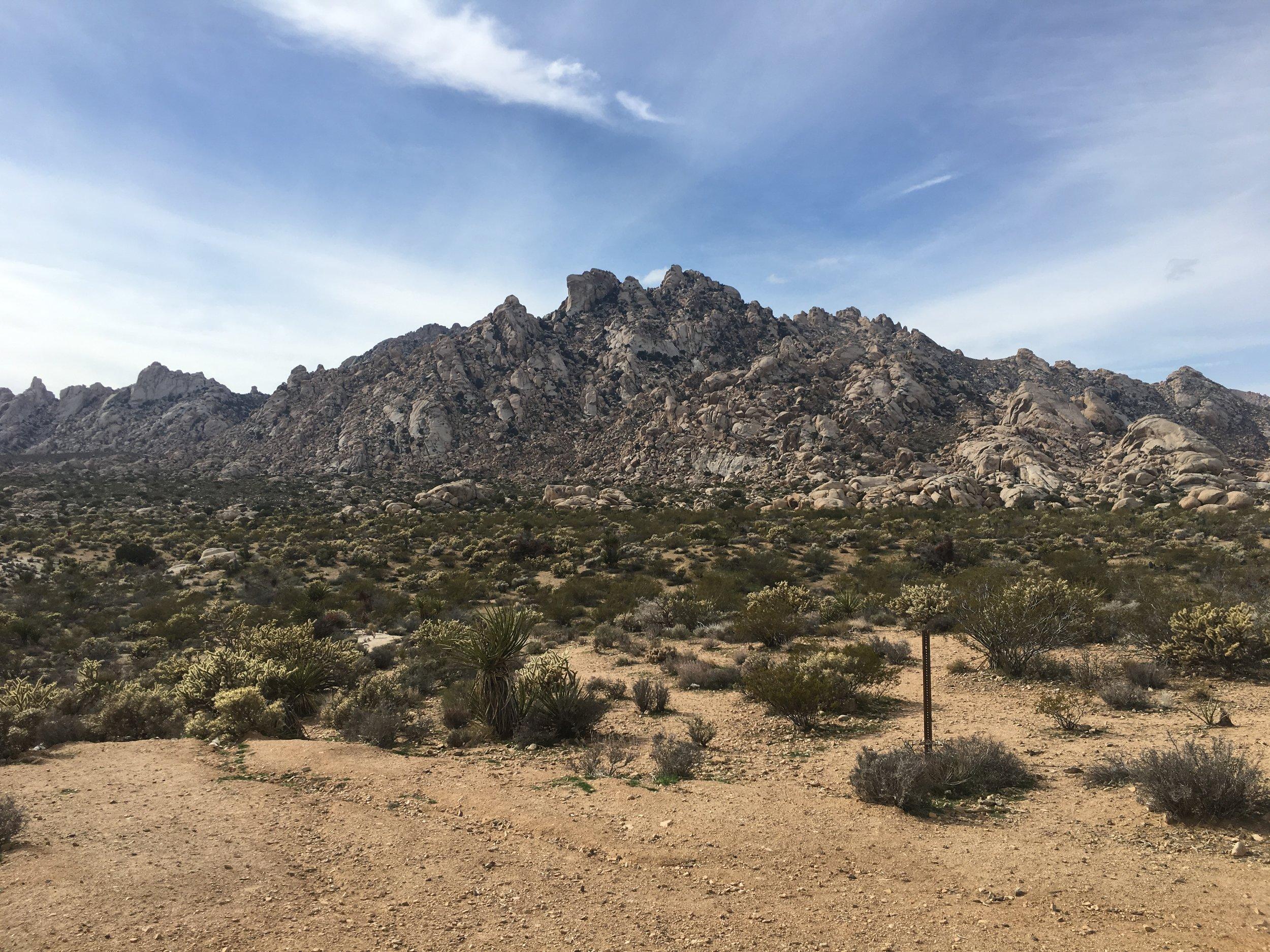 MojaveDesert.jpg