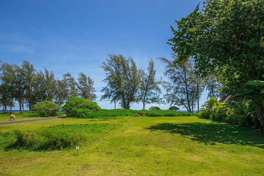 Kuhio-Hwy-Hanalei-HI-96714-USA-large-013-13-untitled-1500x1000-72dpi.jpg