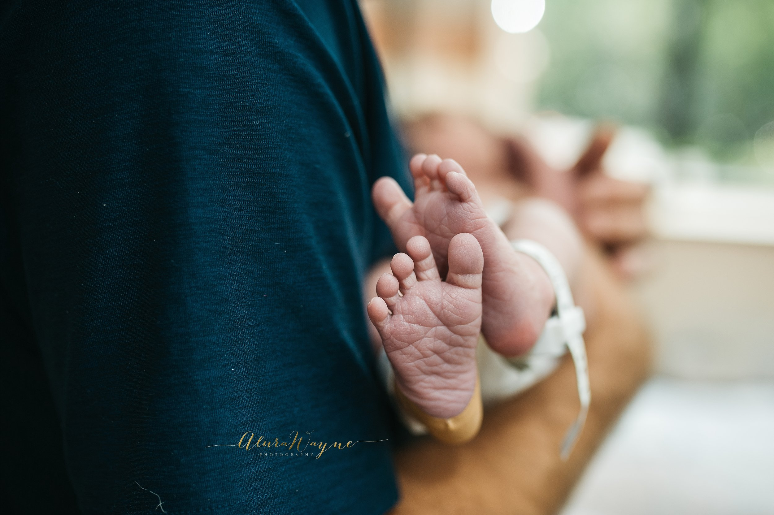 nashville newborn photographers | nashville fresh 48 photographers | alurawayne photography