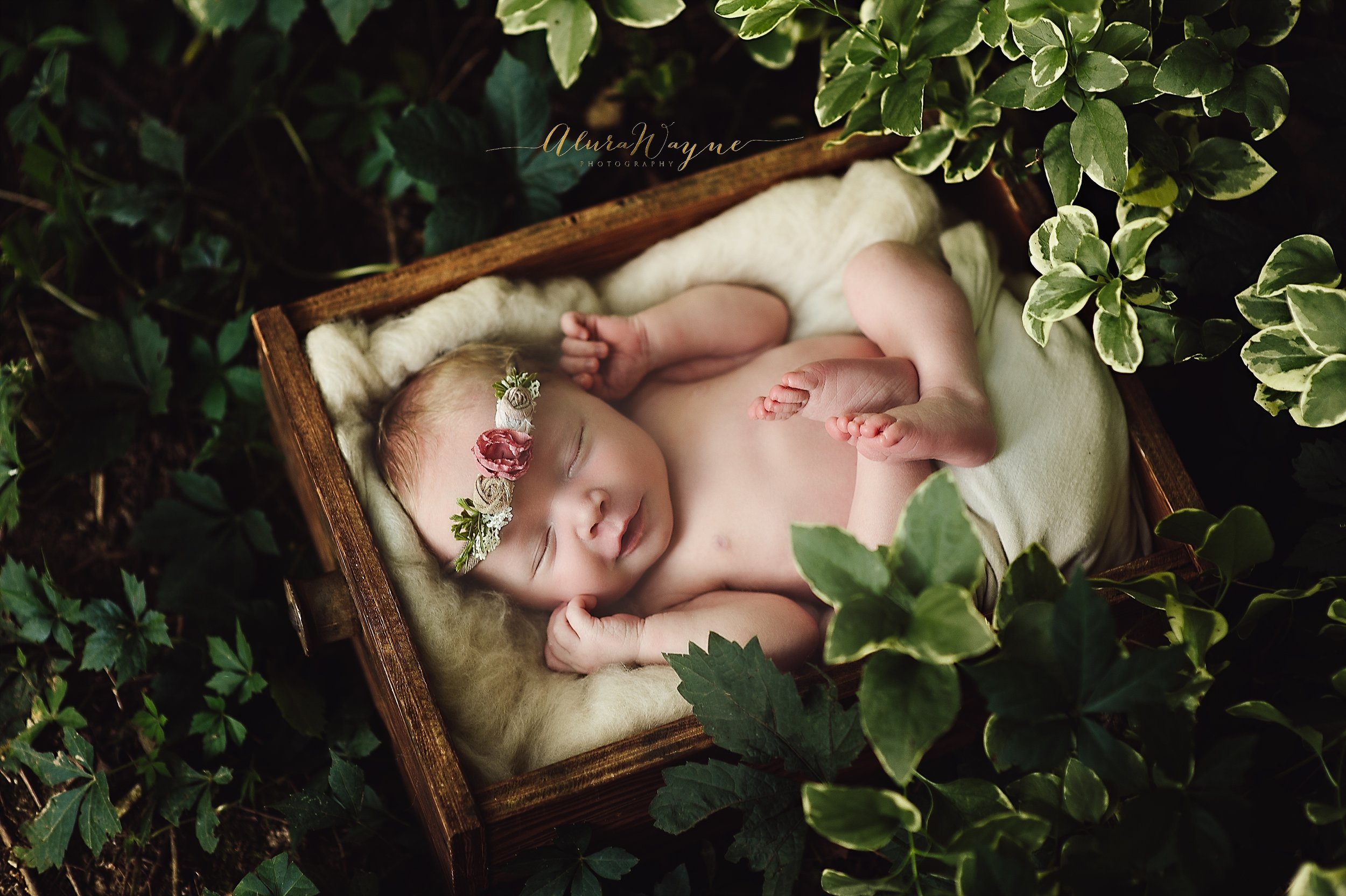 nashville newborn photographers | alurawayne photography