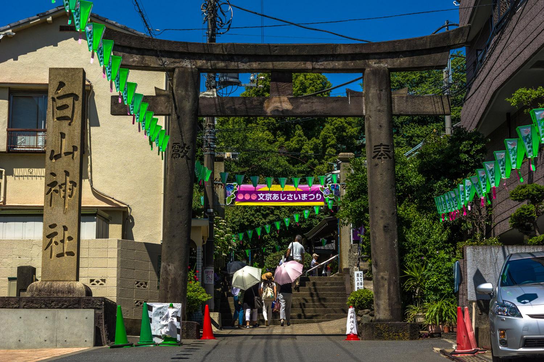 The entrance to Hakusan shrine in Tokyo's Bunkyo ward