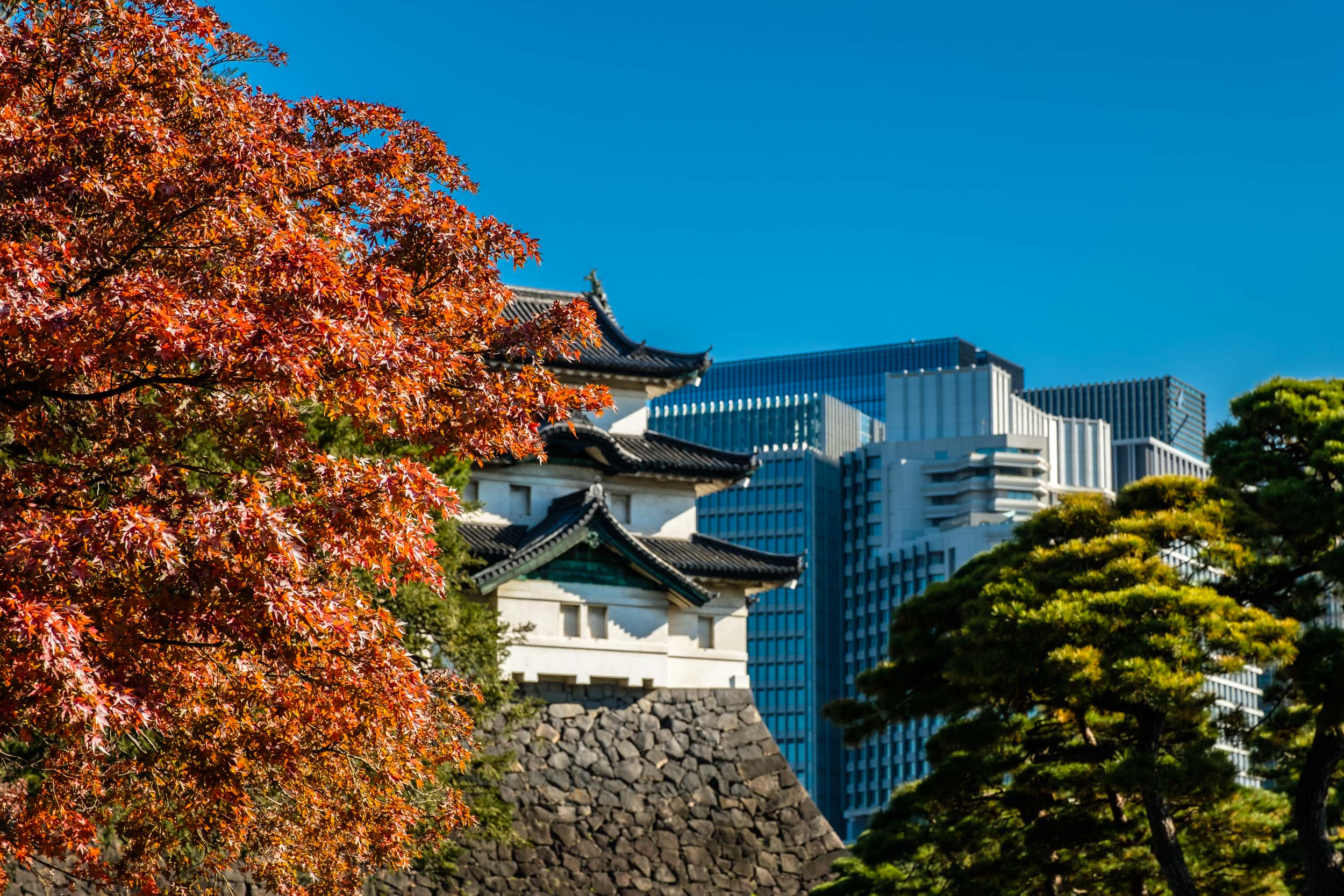 Fujimi keep and the Marunouchi beyond