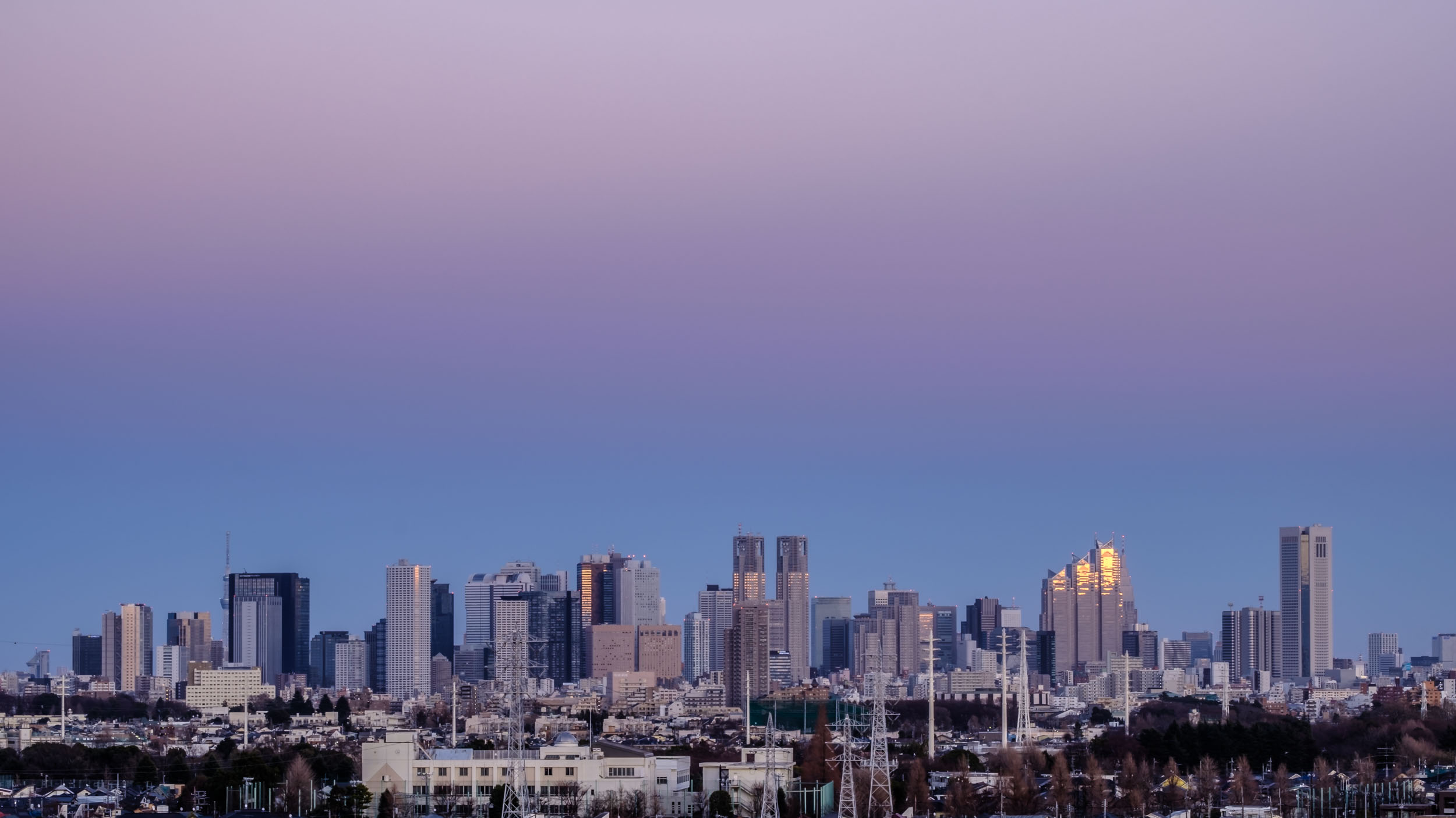 The Shinjuku skyline in the early evening