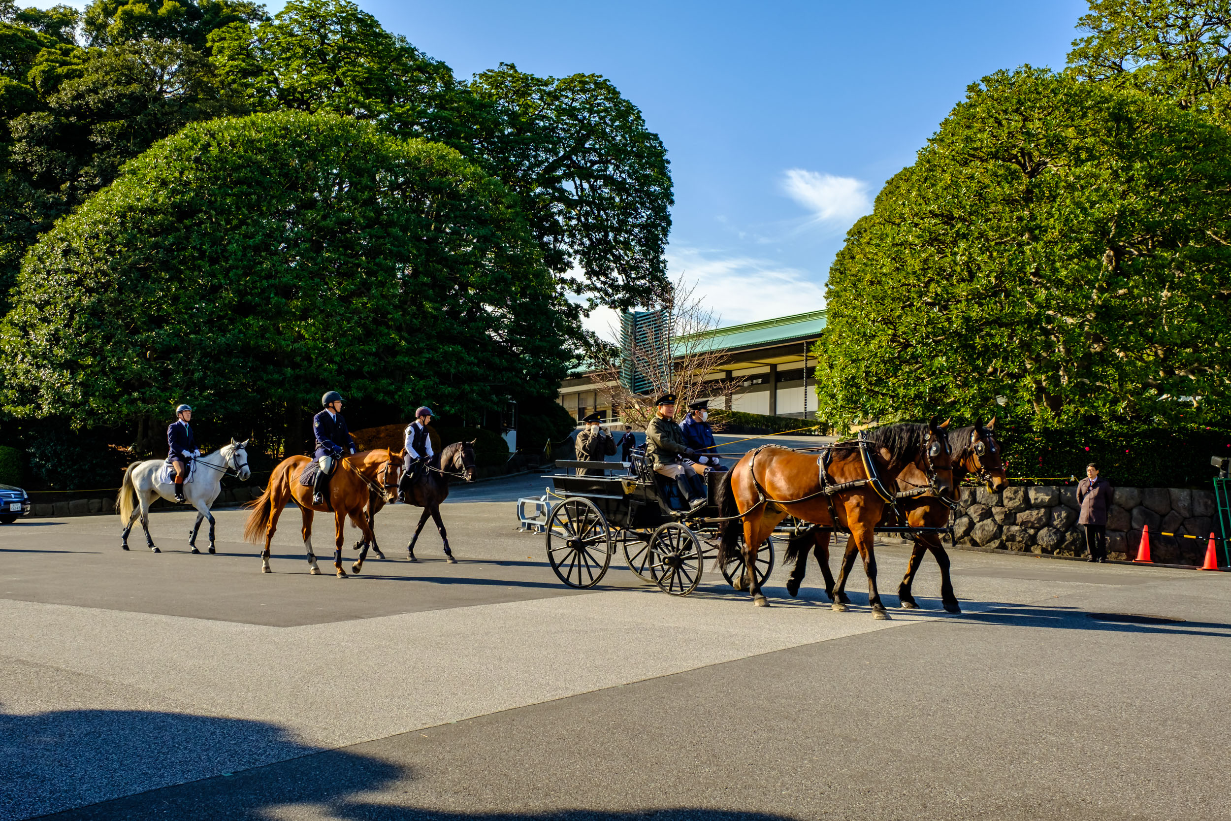 Horses and carriage during training, passing in front of Chowaden Hall. A very rare sight for most people.