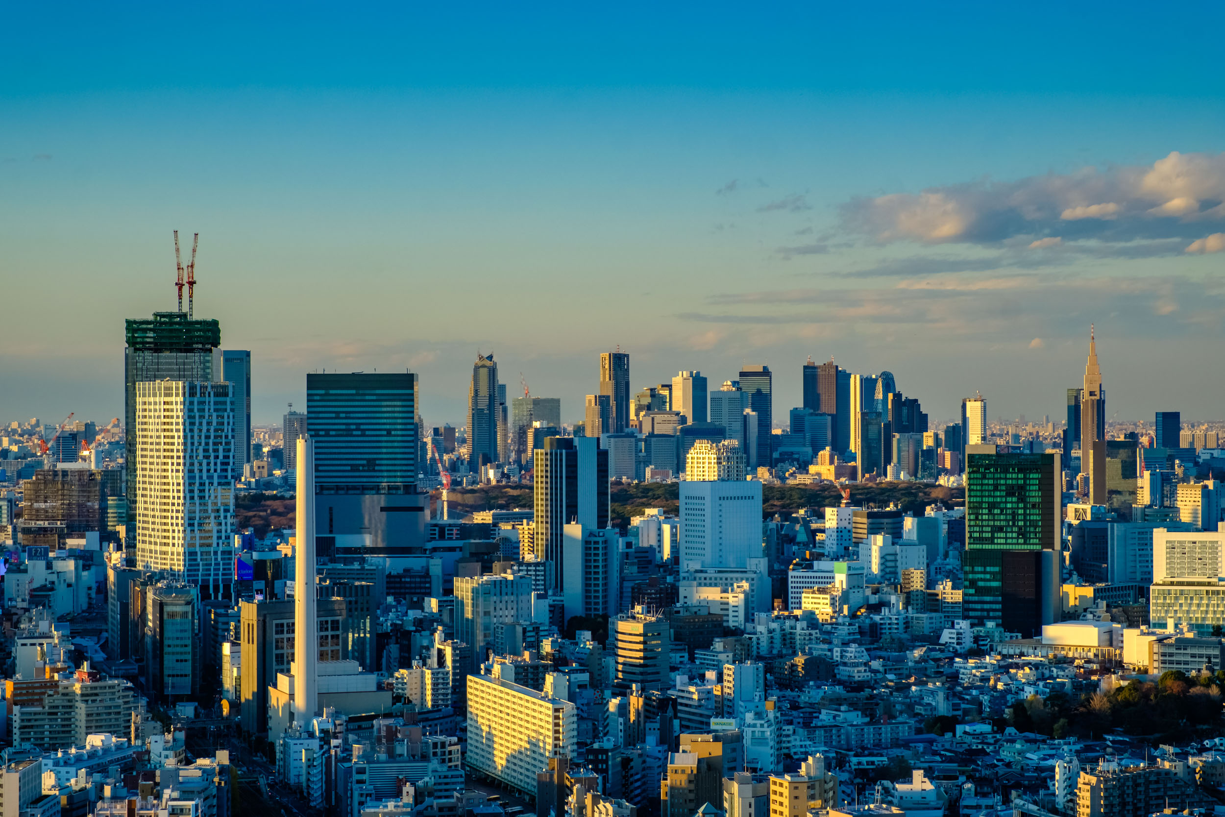 To the north you'll find Shibuya, which is closest, and slightly further away is Shinjuku.