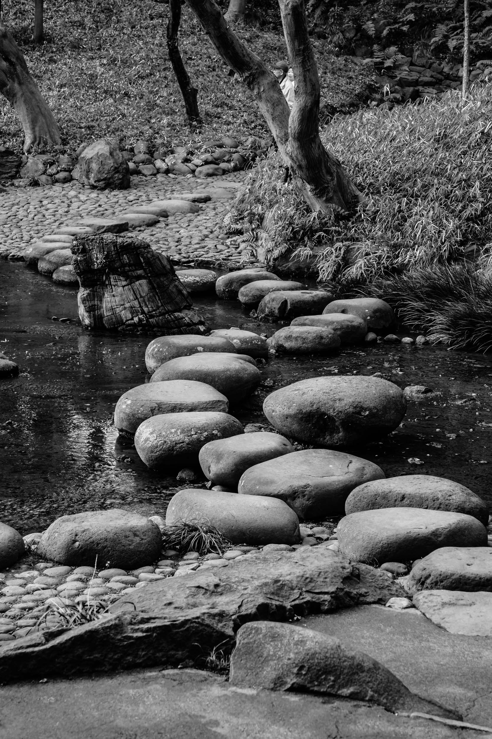 Stepping stones across the Oi river